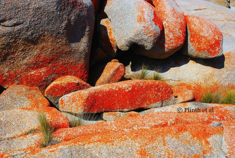 orange-rocks-and-grasses-lq.jpg