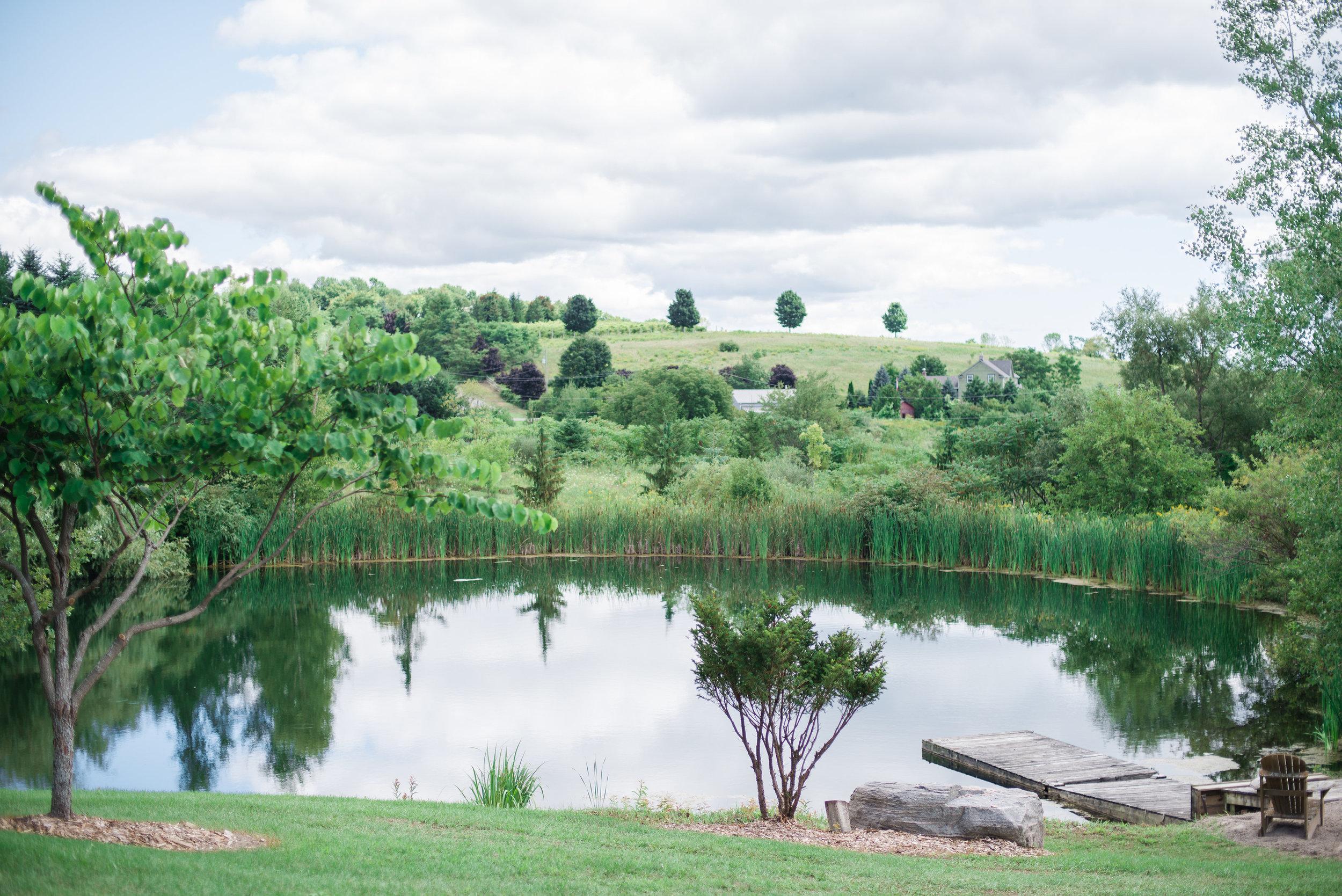 Cottage area - pond.jpg