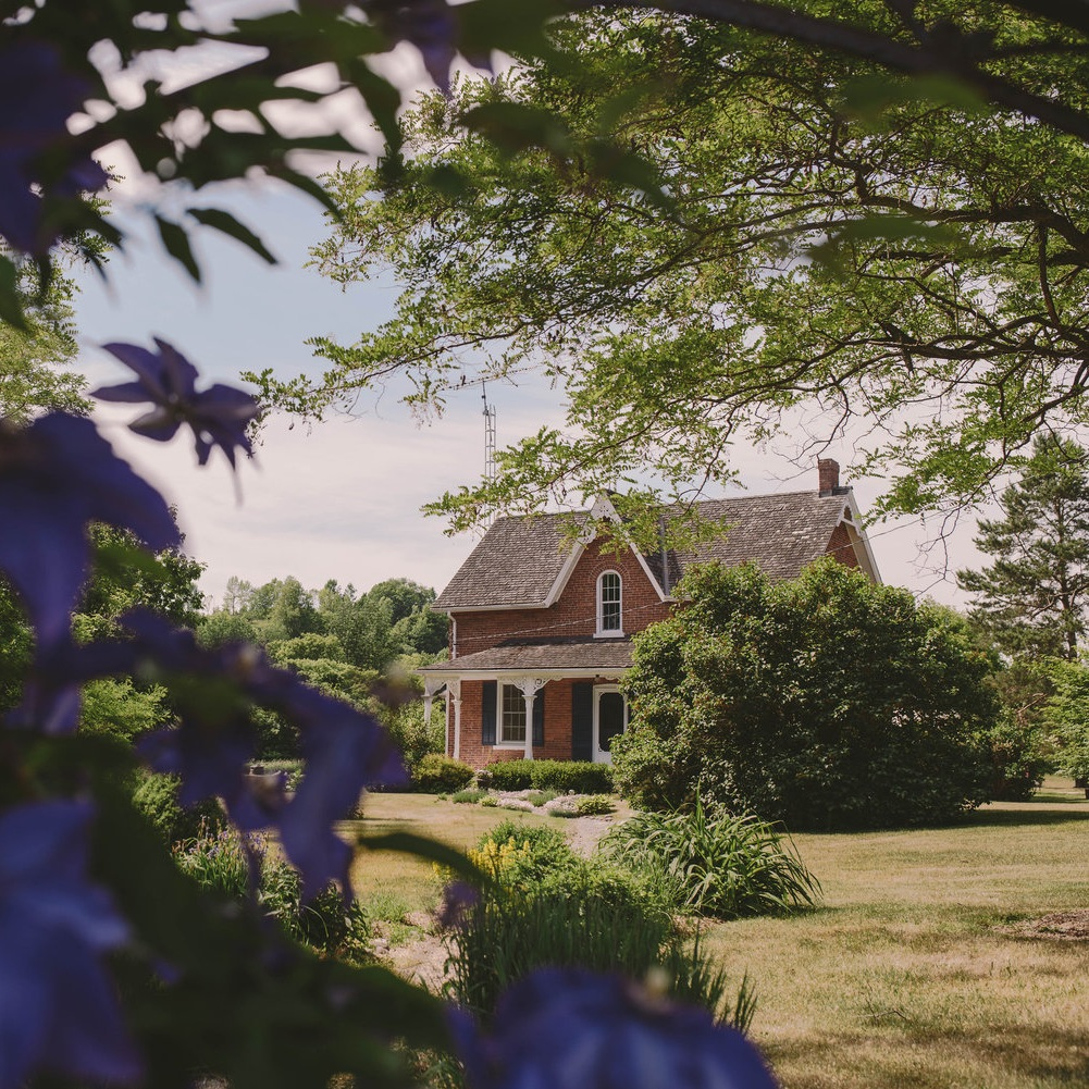 house+front+with+purple+flowers.jpg