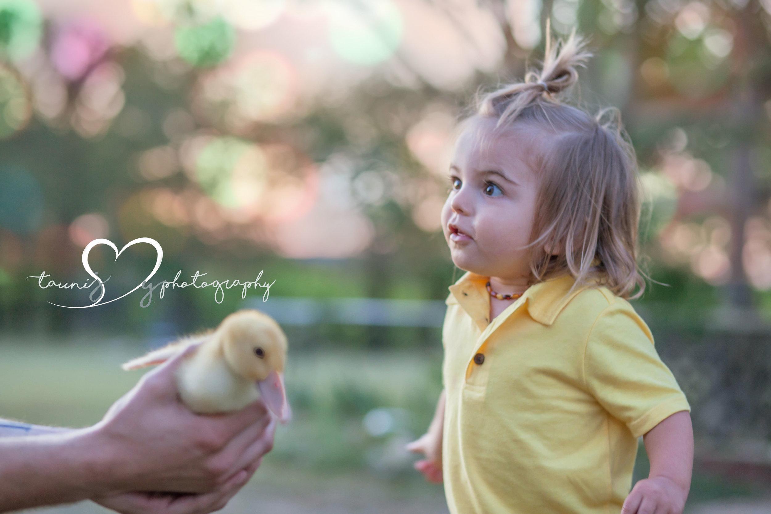 children photographer austin