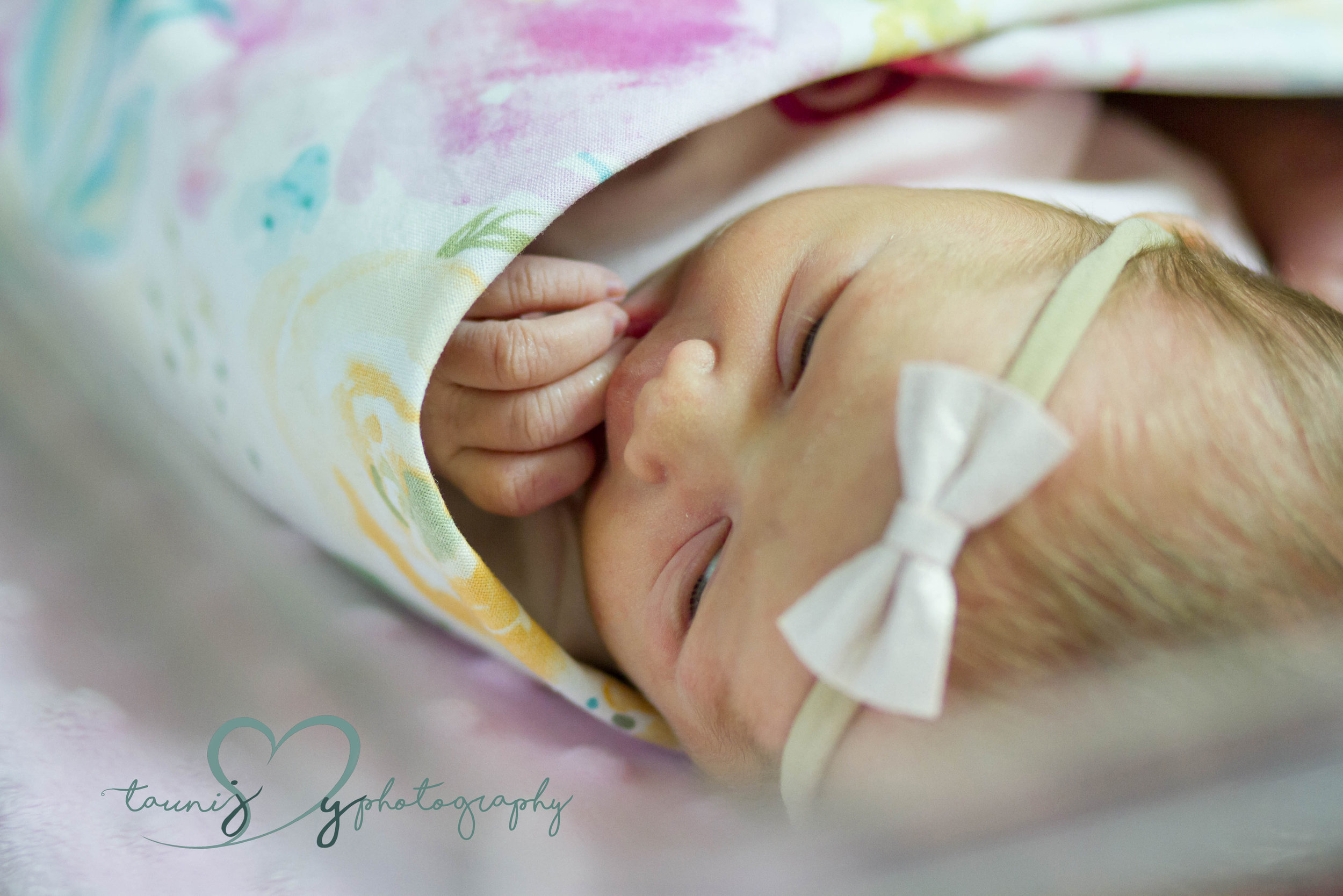 Newborn austin photographer
