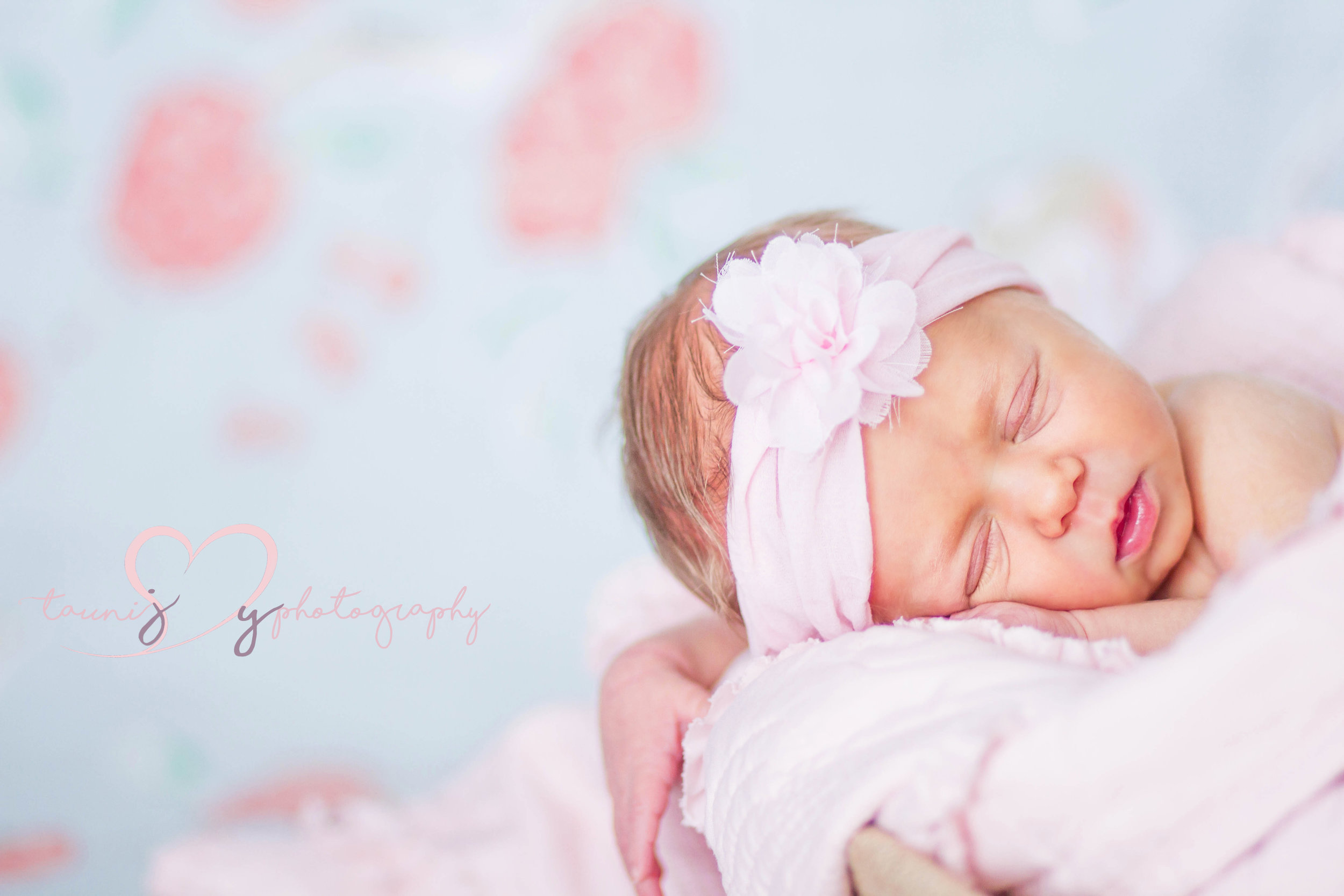 marble fall newborn photographer