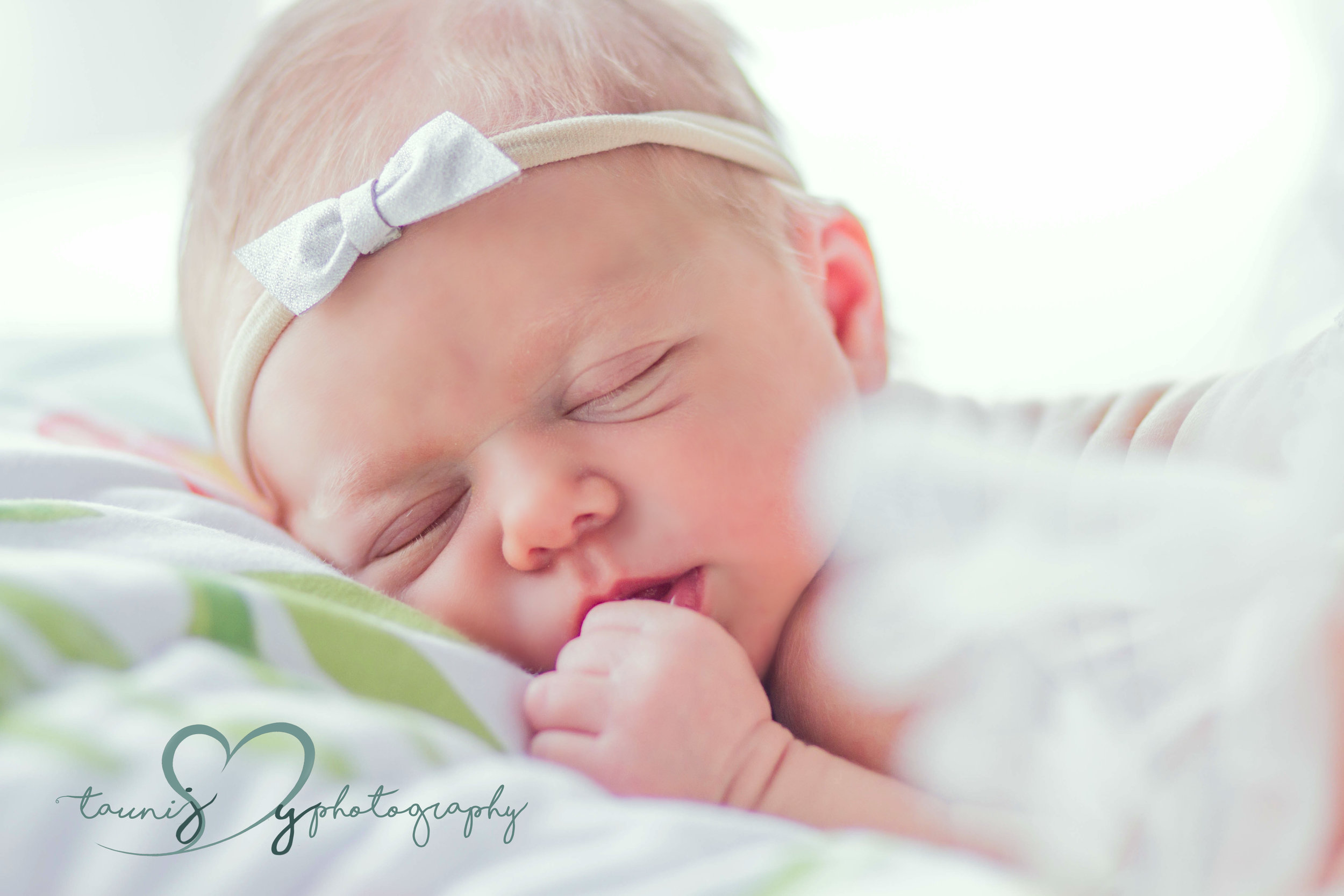 newborn photographer austin texas