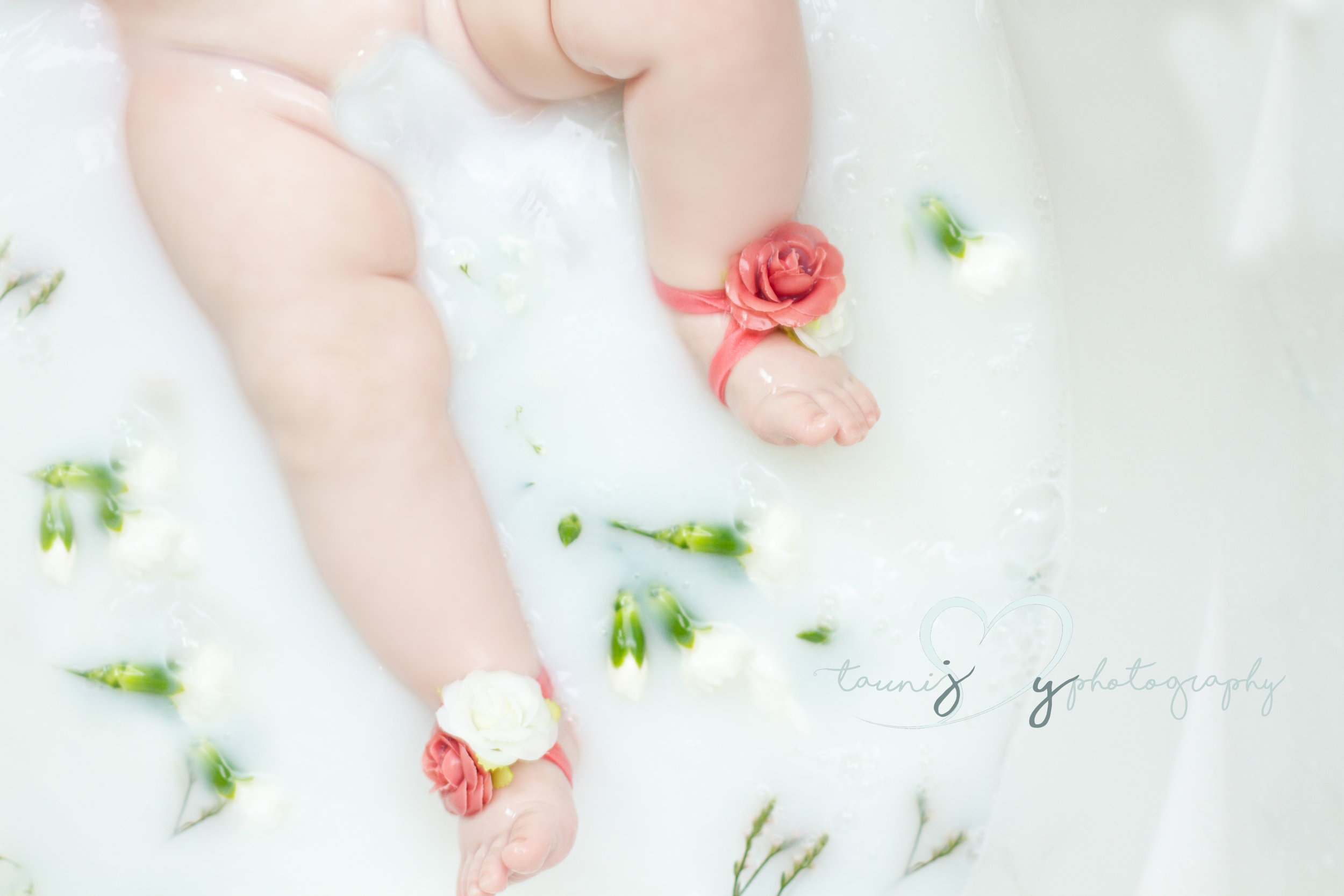 milk bath baby session Tauni Joy Photography