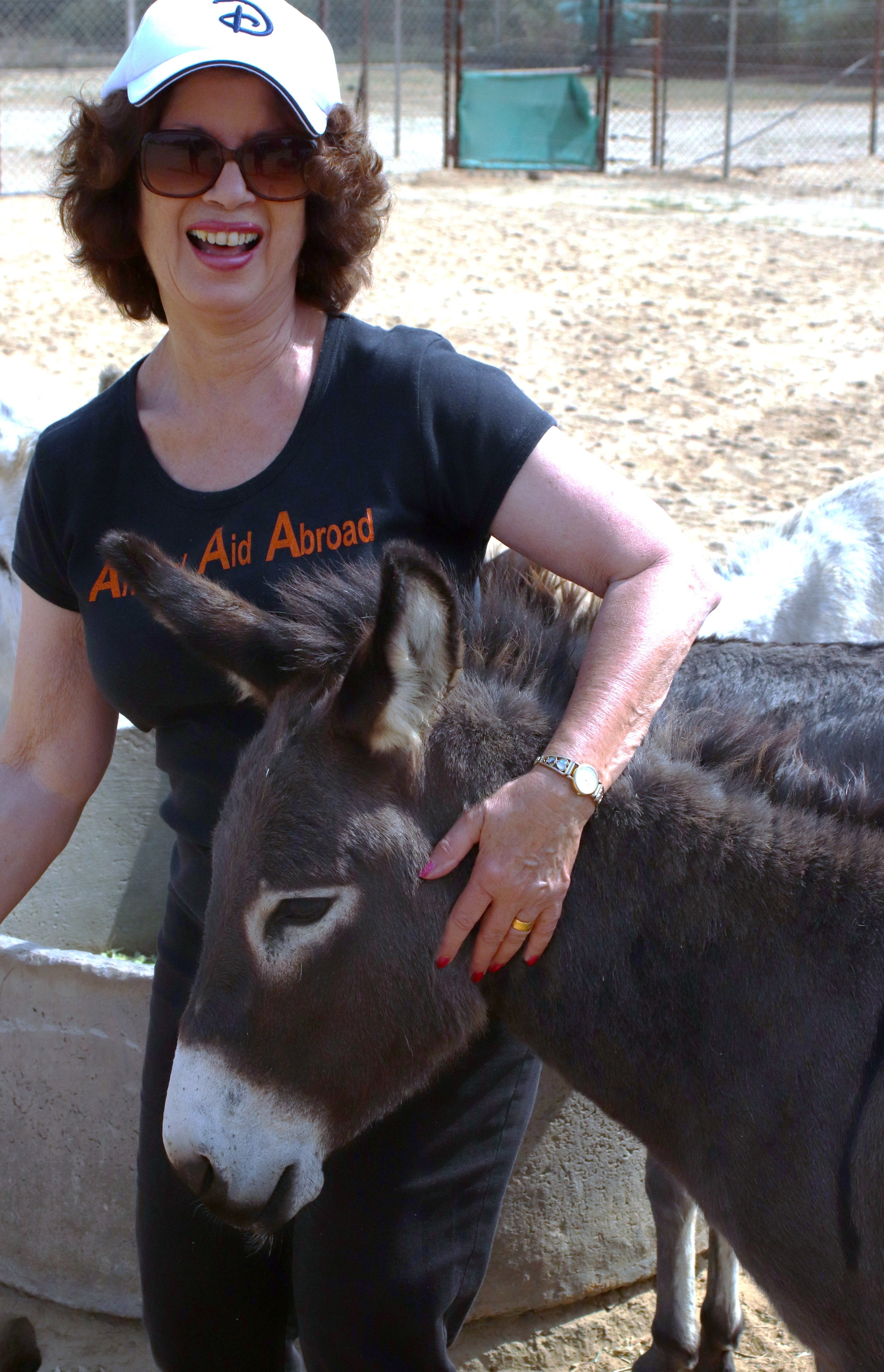 member sharing a joke with donkeys, Friendicoes.JPG