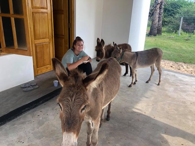 Megan with donkeys.jpeg