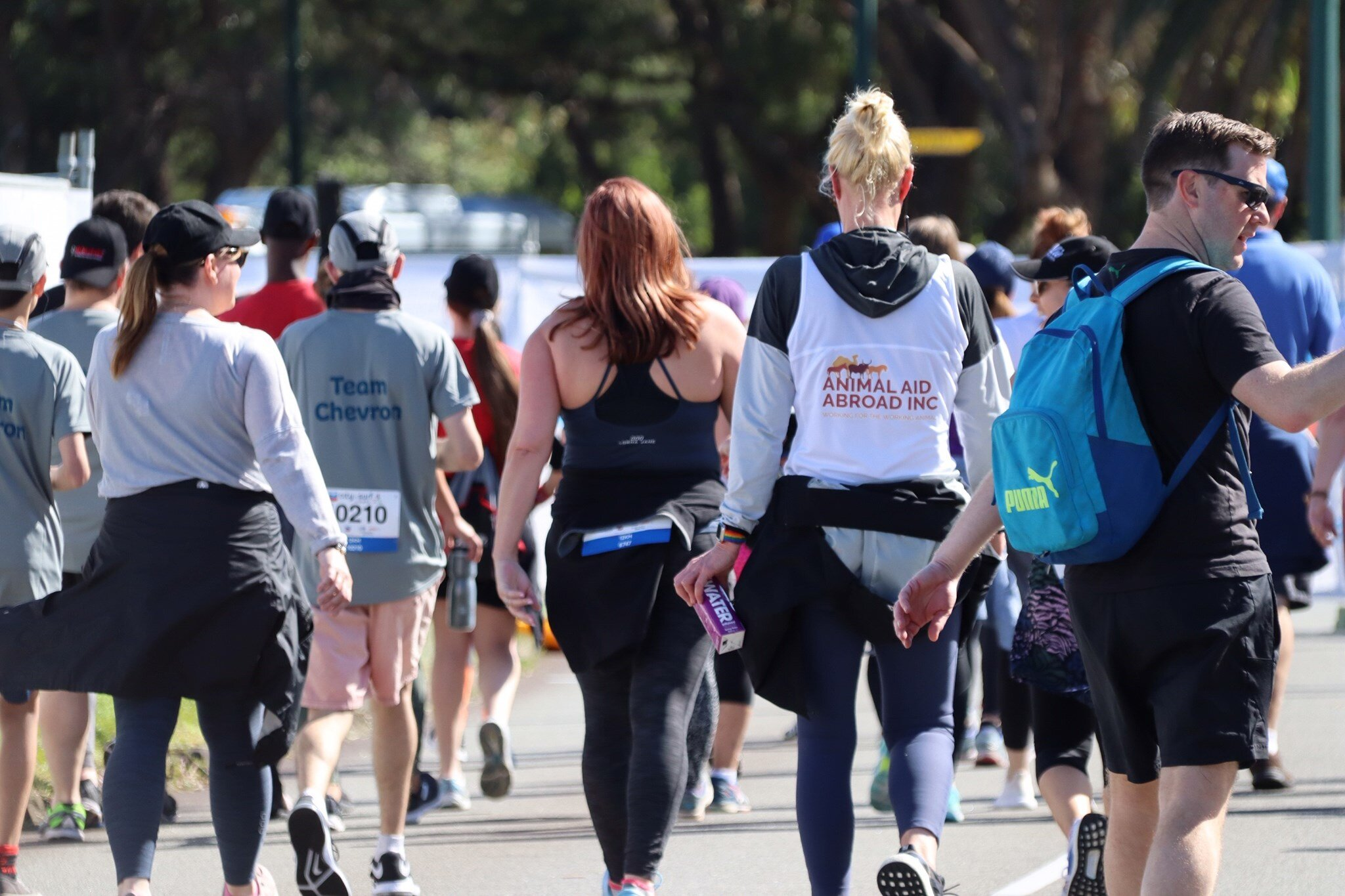 city to surf 4.jpg
