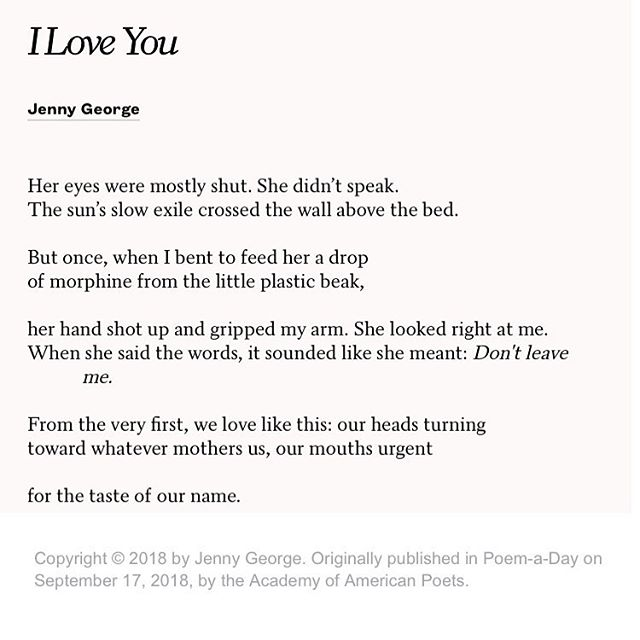 Oh did you need a gorgeous poem today? You did, didn't you. #yourewelcome #poemaday #jennygeorge #readpoetry #weloveyou