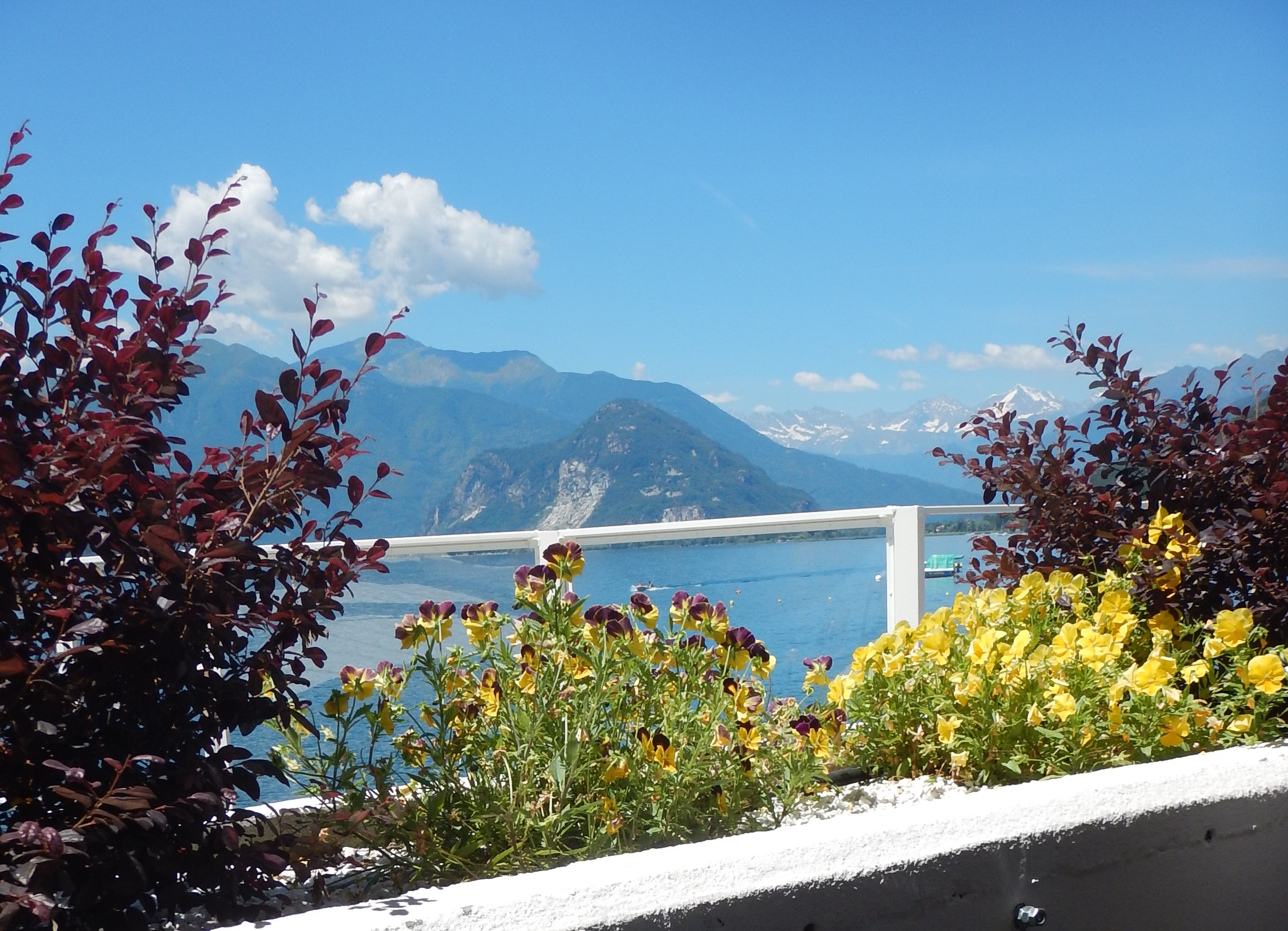 lunch on lake maggiore. Great lunch, great view!! Chocolate box scenery.