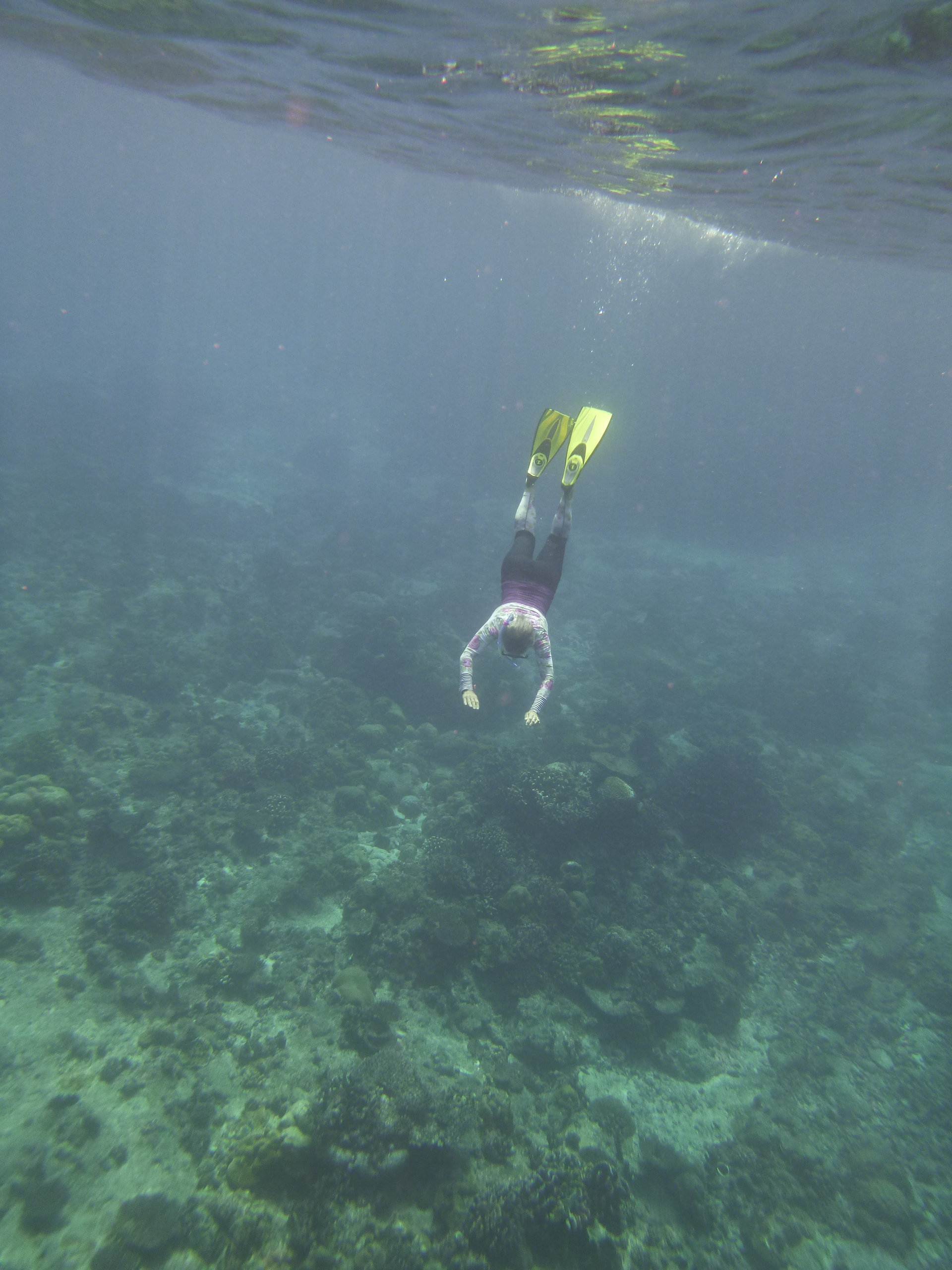 Snorkelling- cocos island, Christmas Island, perentian islands, tioman island, espiritos santos island, Tasmania island and Dove Lake, and now the Mediterranean Coast off as many countries as I can manage.