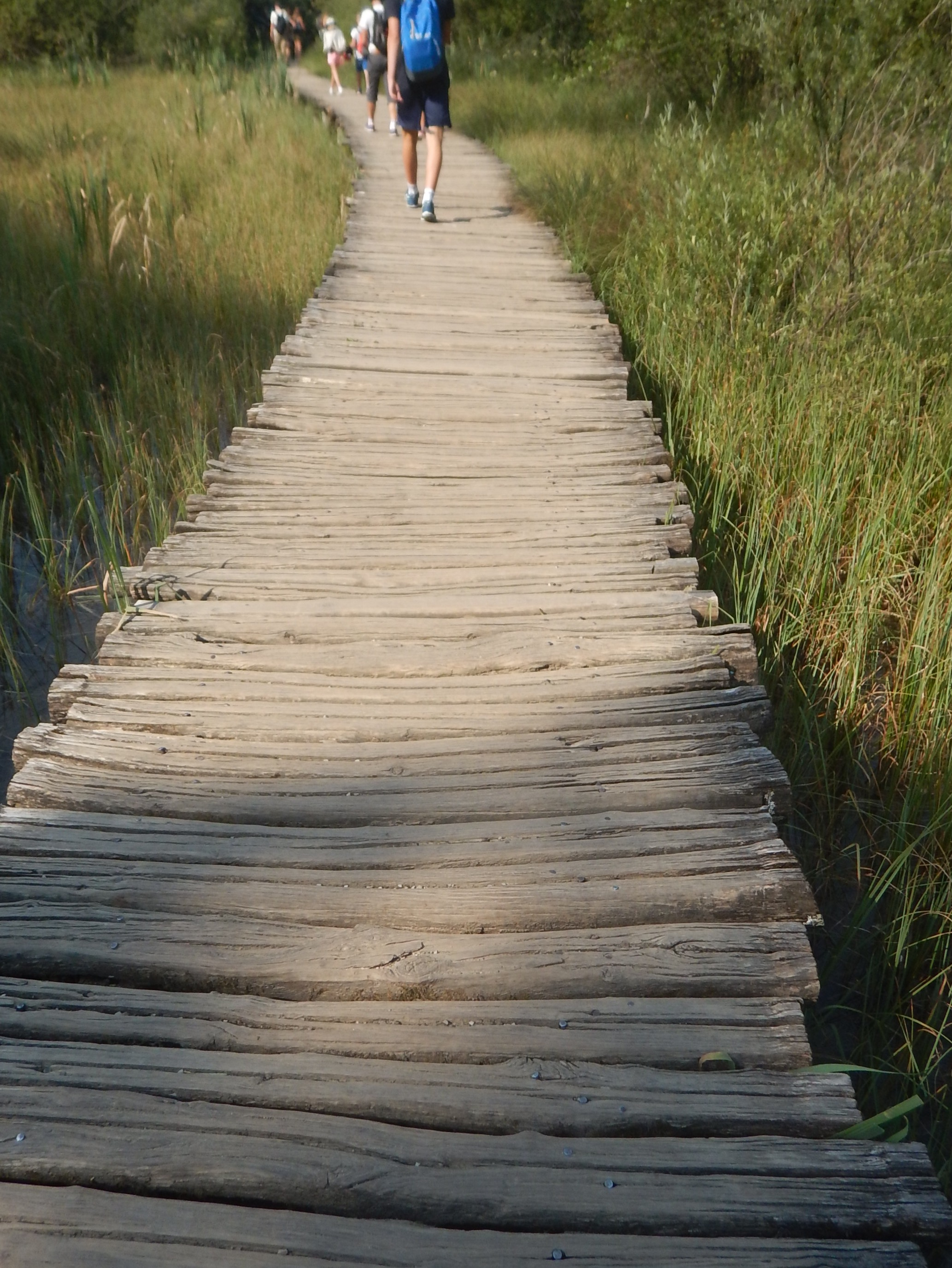 Most of the boardwalks are fairly dated!