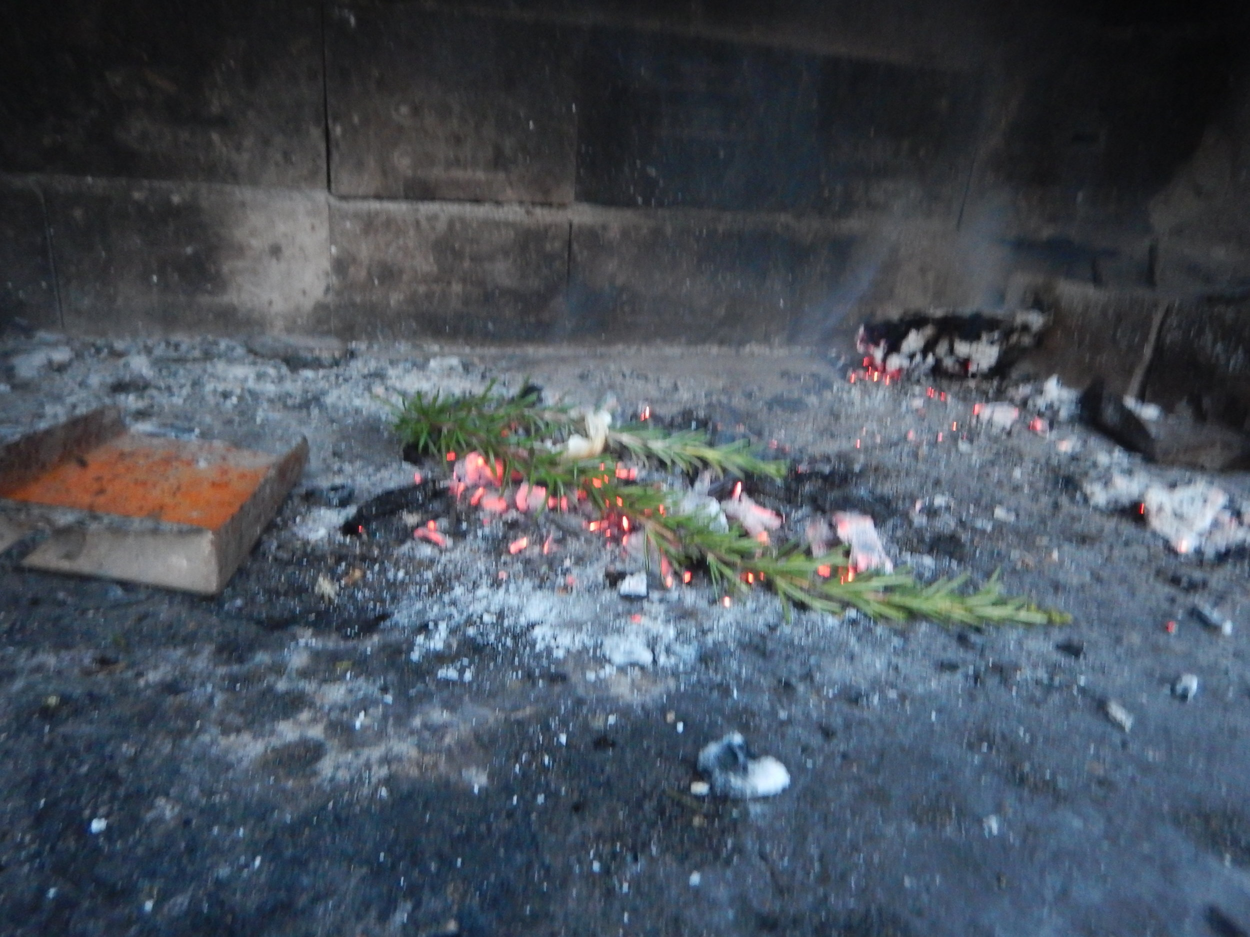 and when I got back to my guest house the family next door had just finished cooking their dinner and always finish off by roasting some rosemary to freshen the small of their cook house.