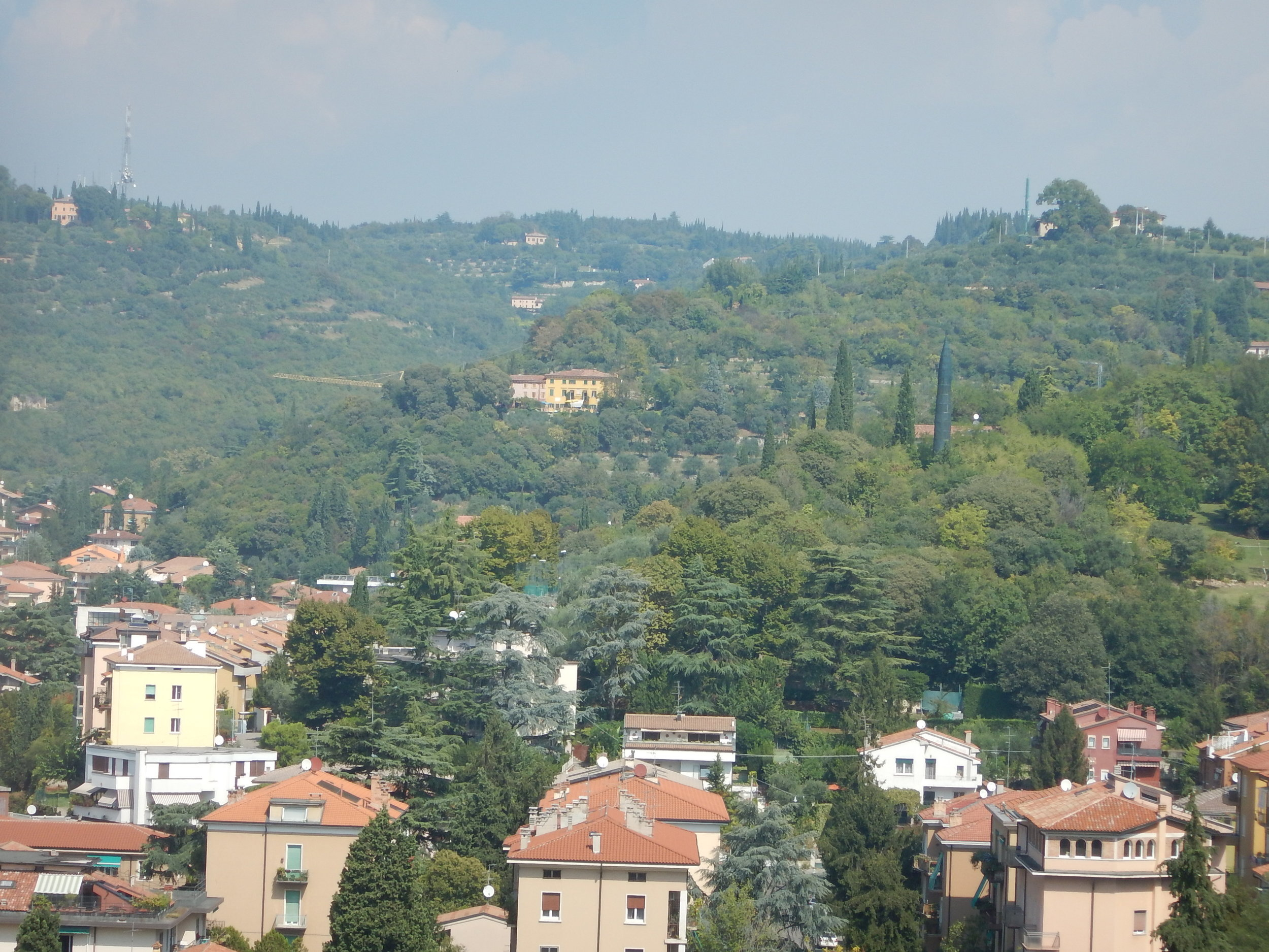the view from St Peters church looking away from Verona old town. What is that green structure diduised as a pencil pine?? Any thoughts?