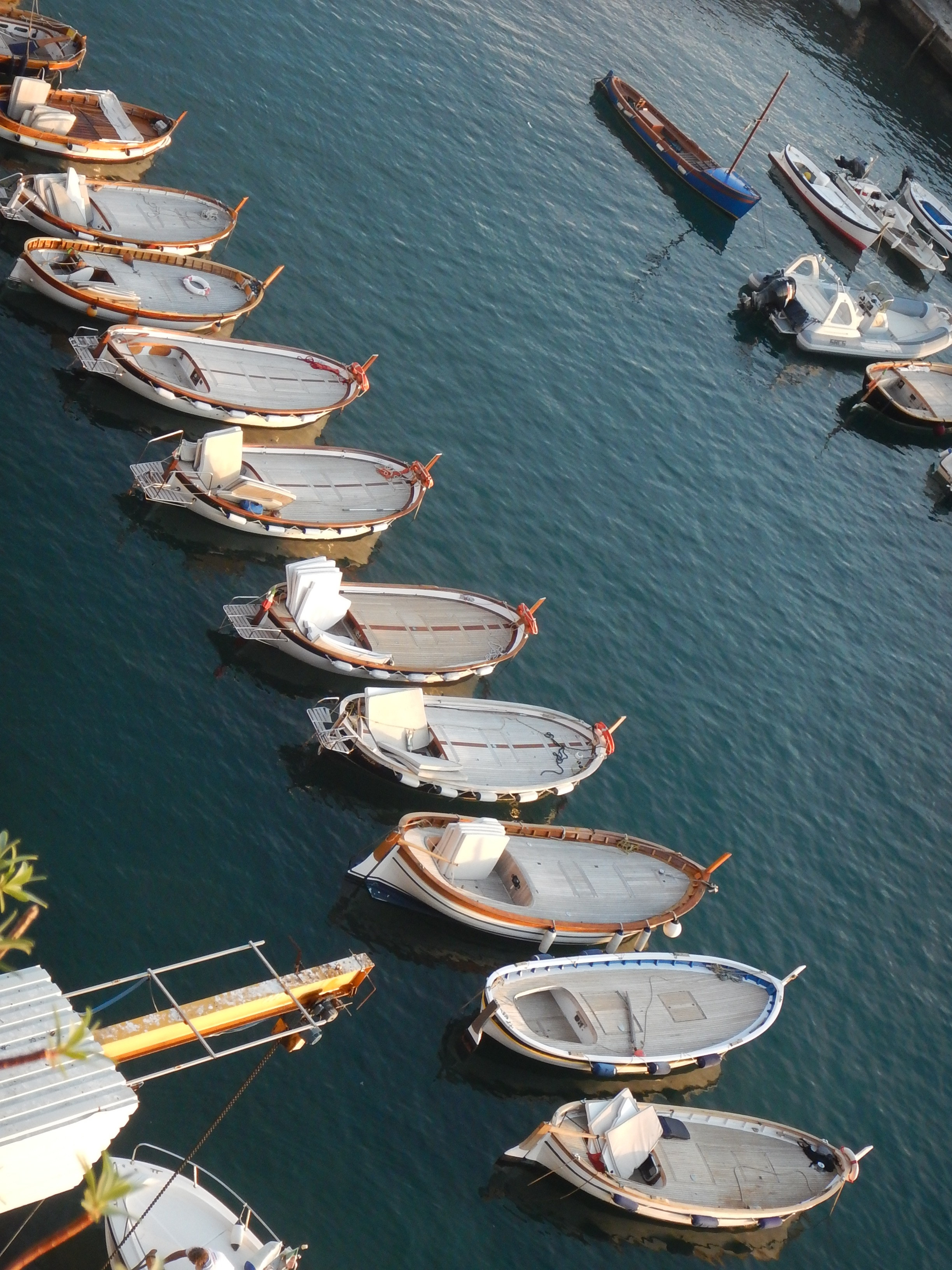 Little boats all lined up for the night.