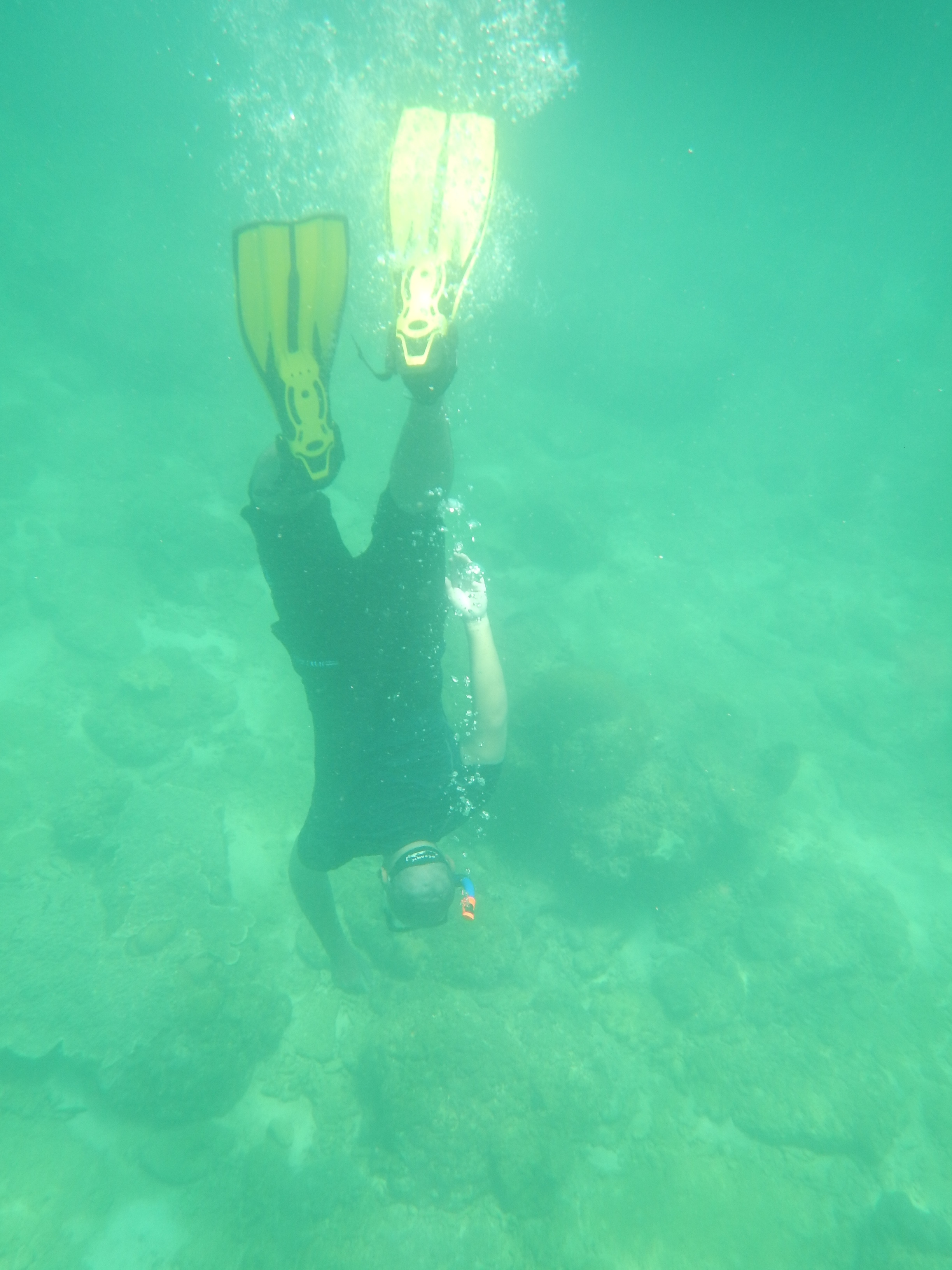 One of the dive instructors heading for the bottom.