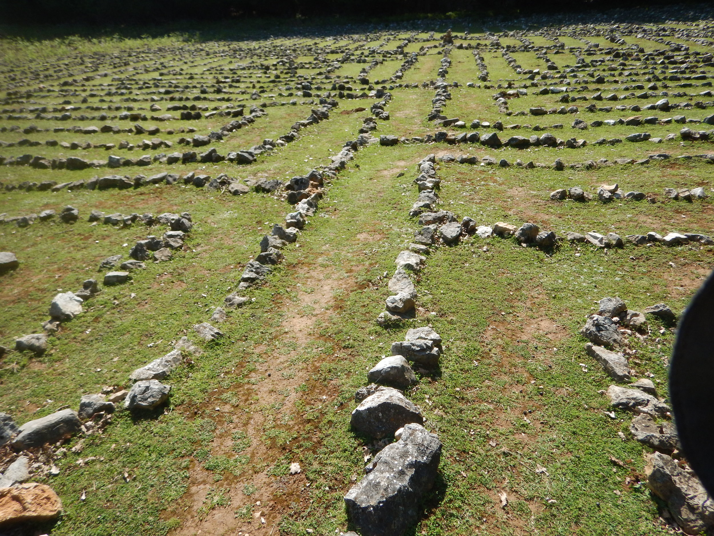 Today I walked the Lada Labyrinth. More on that under another heading.