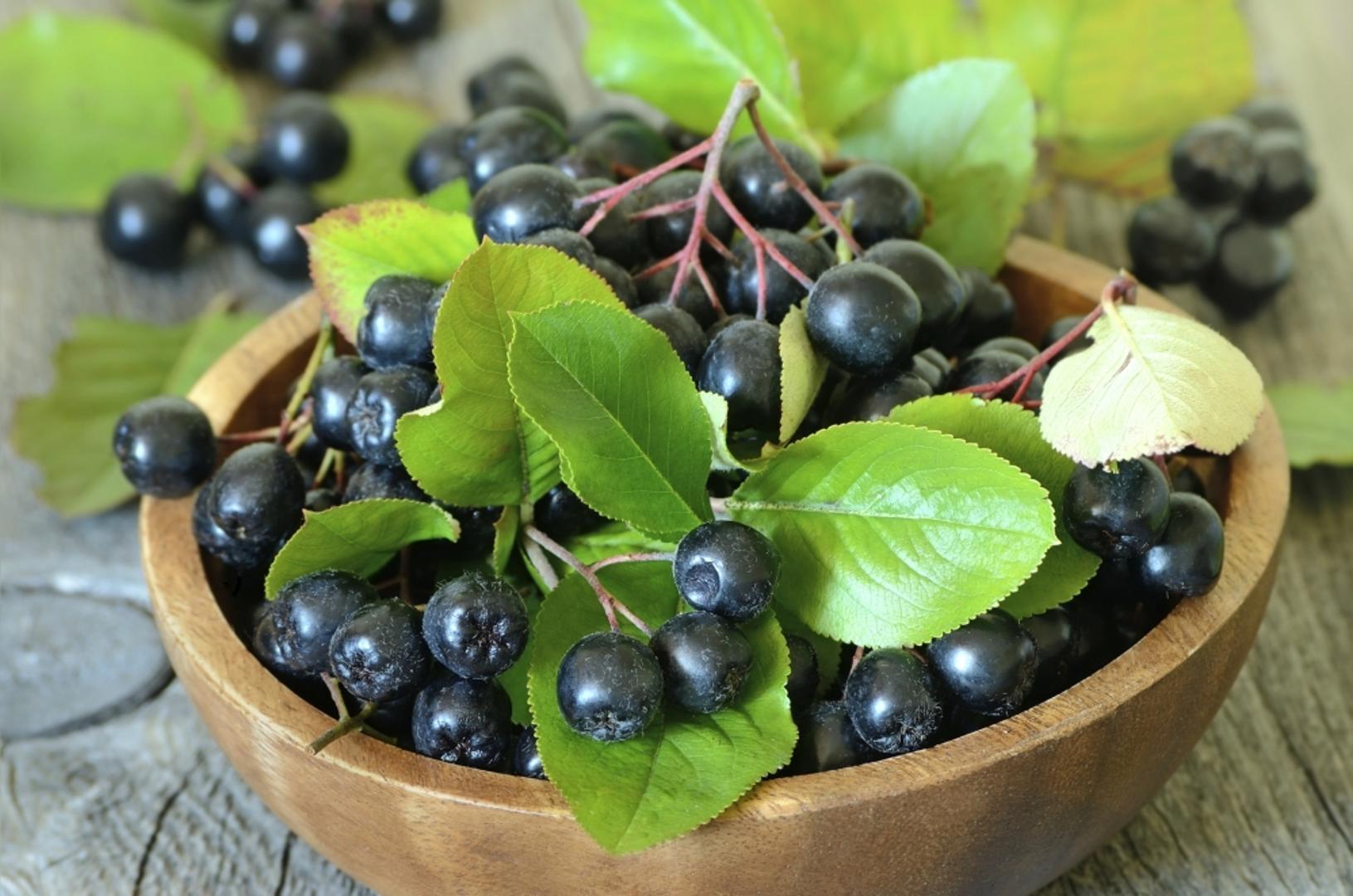 Aronija berries.