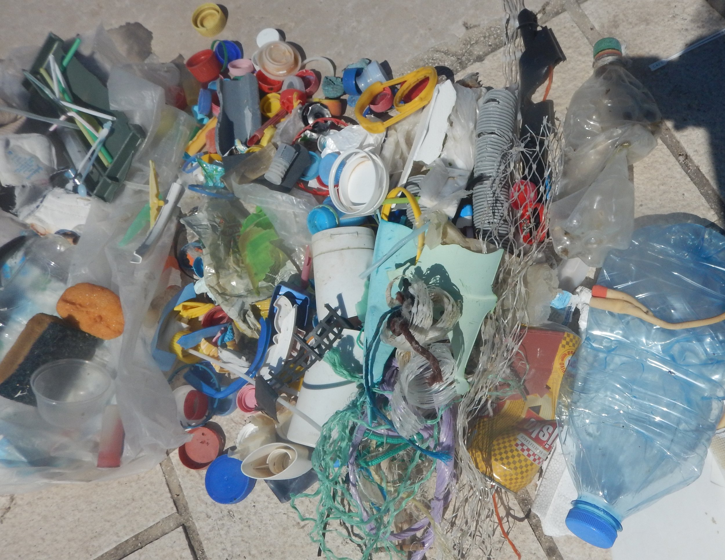 I collected this rubbish, mostly plastic in a 20 m section of the beach. The plastic bag I collected it in was also flotsam and jetsam.