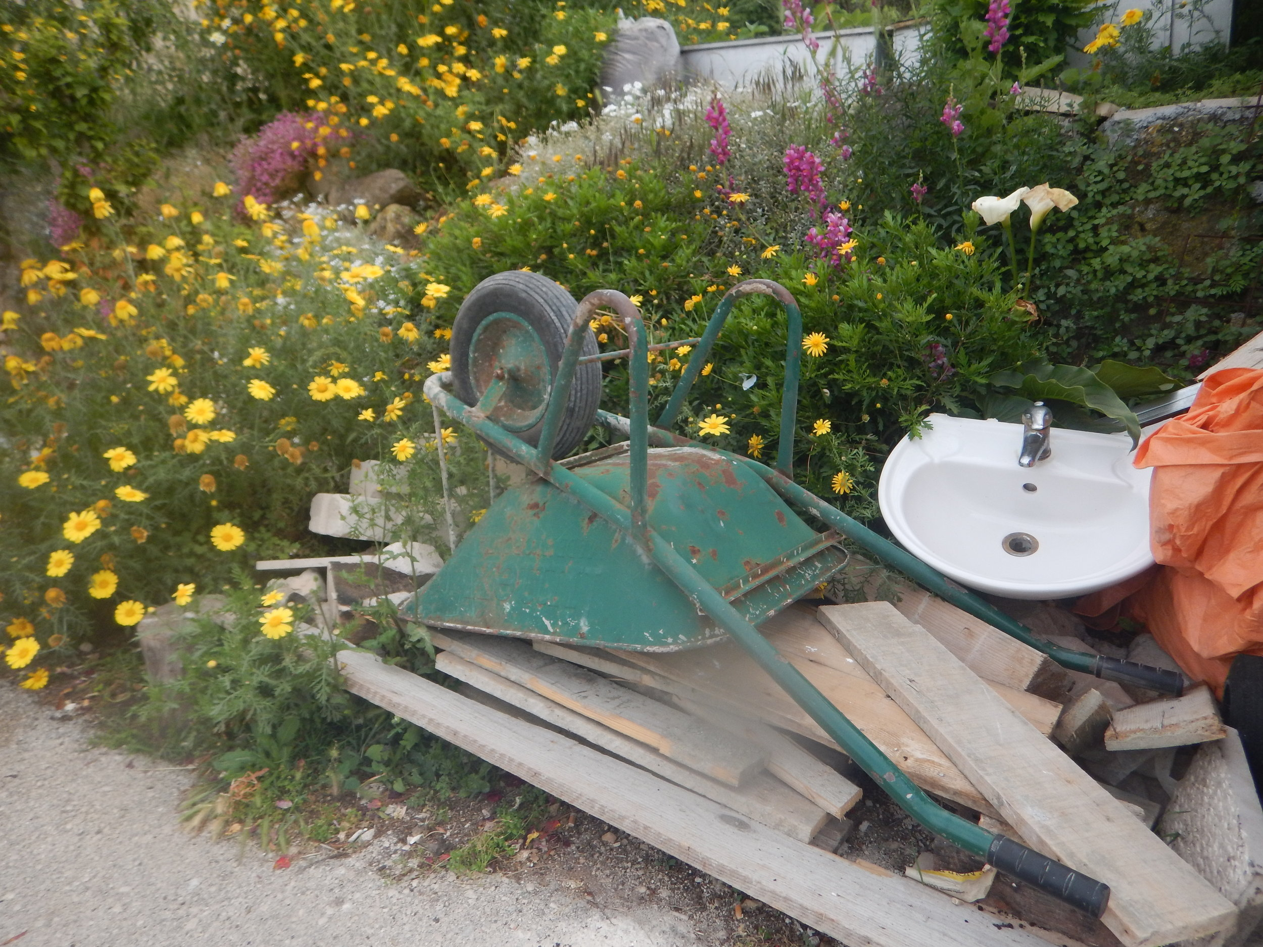 another retired wheelbarrow AND the kitchen sink.