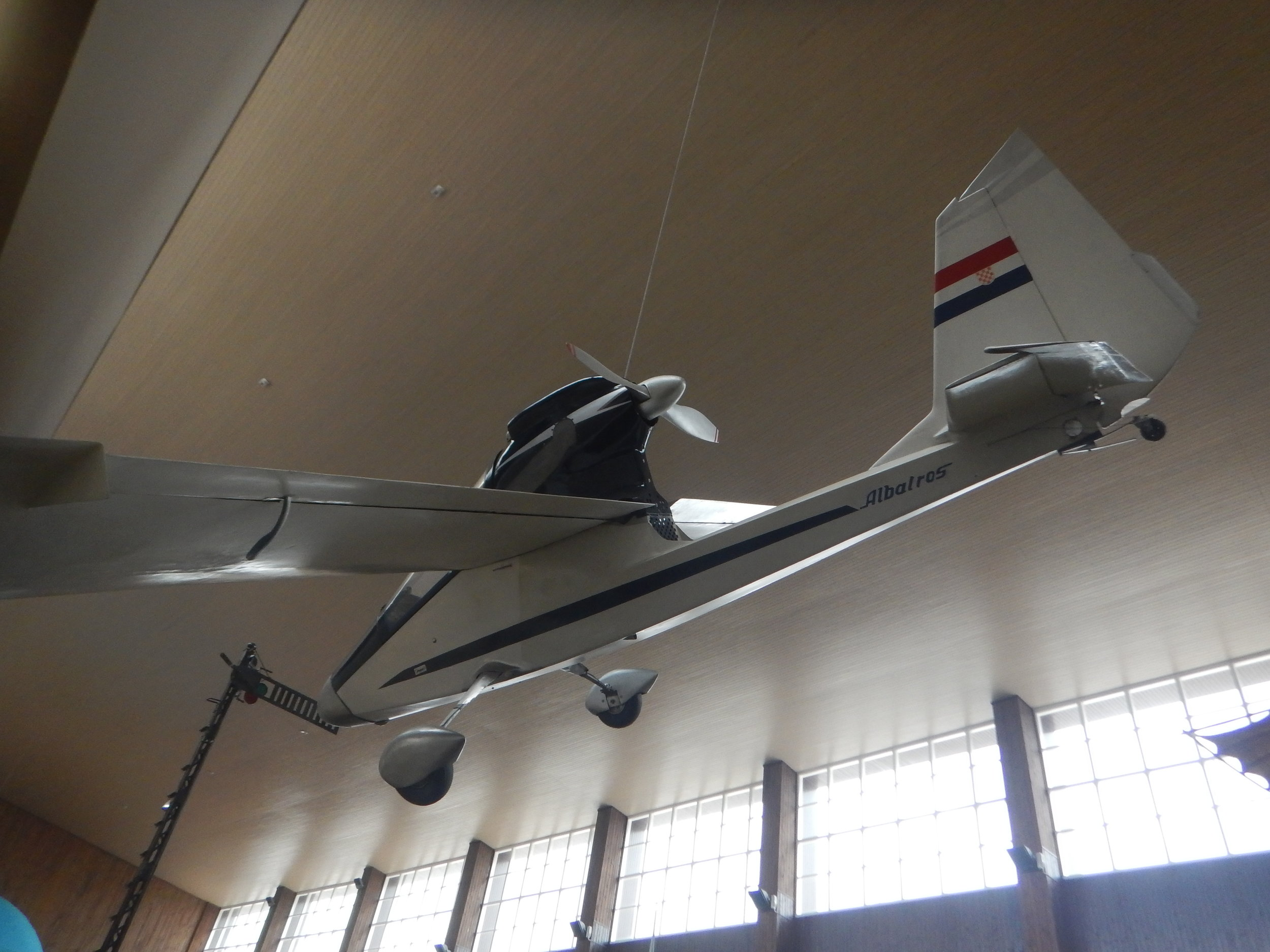 Albatres, small plane. Some think I am an Albatross, they meet and mate for life.