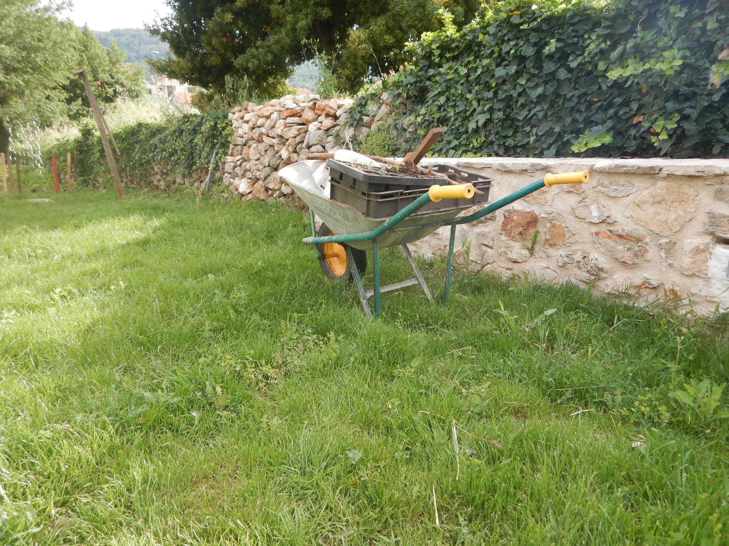 wheelbarrow in Silvija's garden in Stari Grad