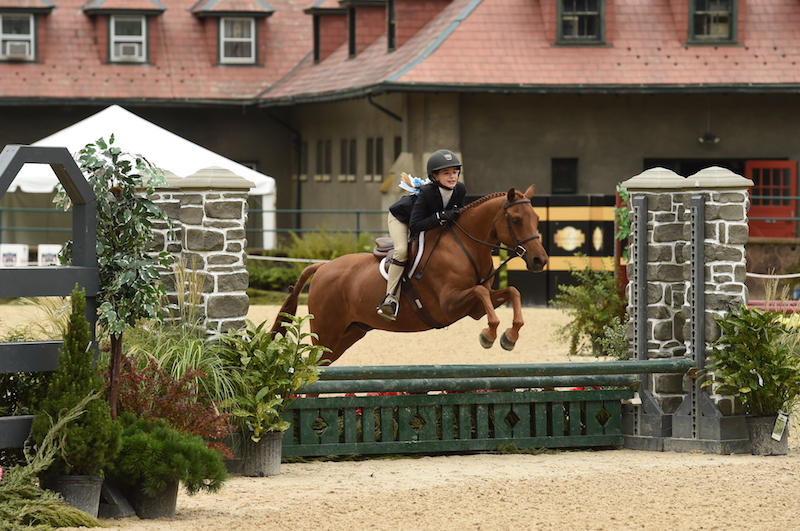 Tarin Kiely and Copper Penny competing at Hamilton Farm. Photo by Anne Gittins Photography