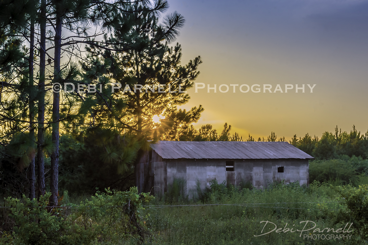RC Barn Sunset LS-029