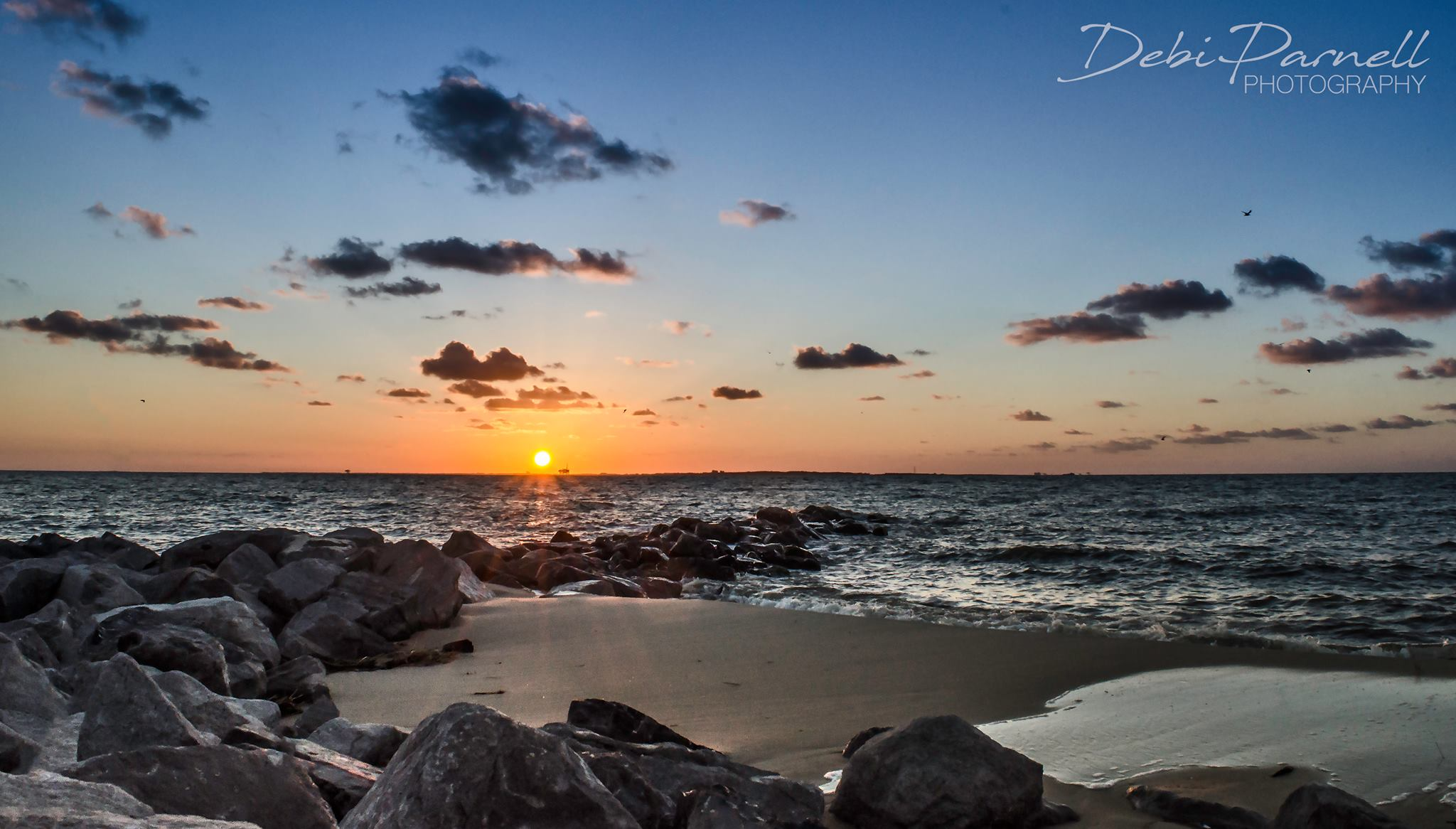 Dauphin Island Delight