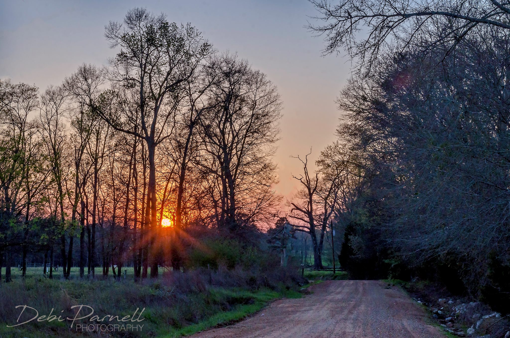 Dirt Road Sunset