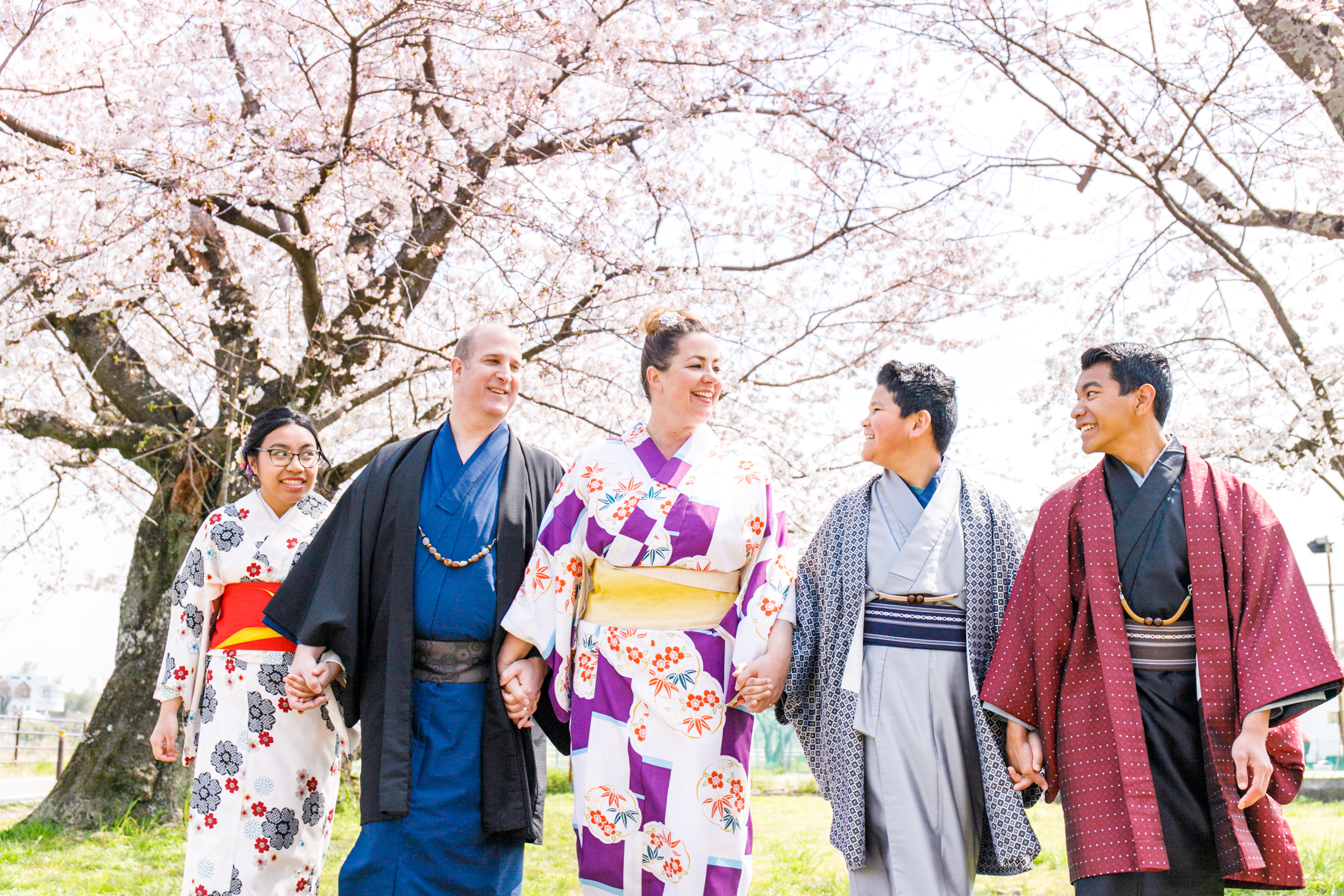 Photoshooting with Cherry blossoms in Osaka, Kyoto and Tokyo