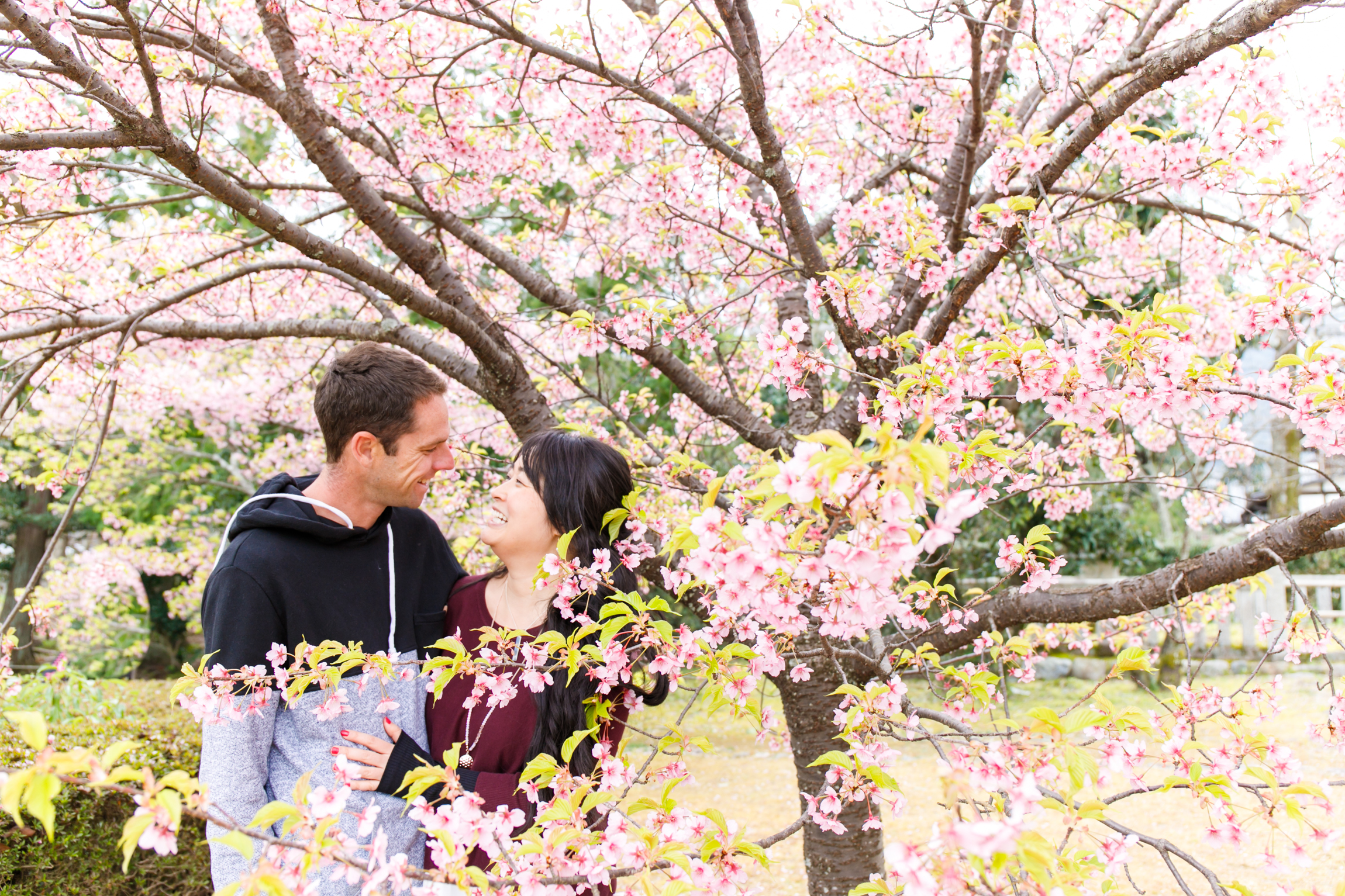 Photoshooting tour in Osaka, Kyoto and Tokyo