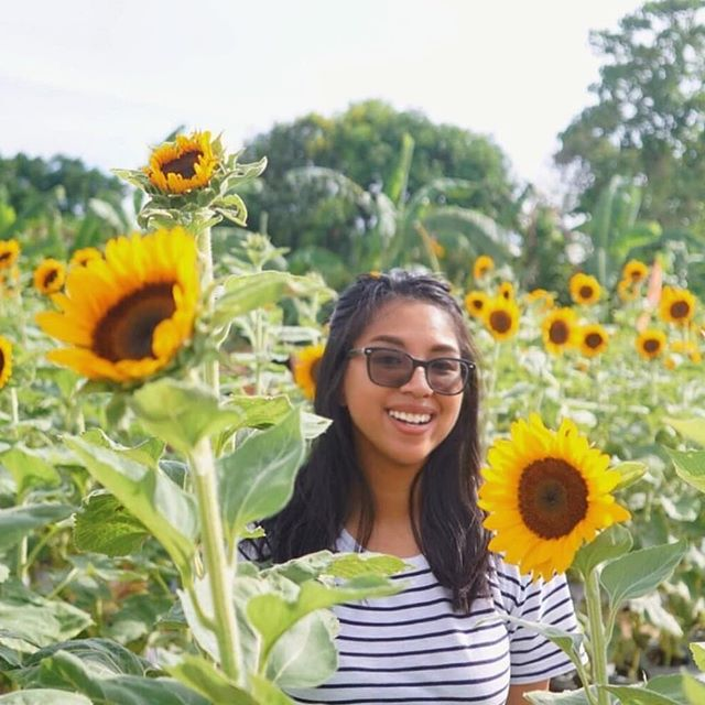 Just look at this ball of sunshine in a sea of sunflowers ☀️🌻 Photo: @shaynenuesca . . . Use #sunkissedsomewhere on your travel photos to get featured ☀️ . . . #wanderlust #travel #girlslovetravel #travellife #digitalnomad #travelporn #travelandlife #traveladdict #travelbug #travelpic #traveldiary #travelpostdaily #instavacations #travelgram #travelblogger #travelvlogger #travelersnotebook #travelphotography #backpacker #hostel #hostellife #backpacking