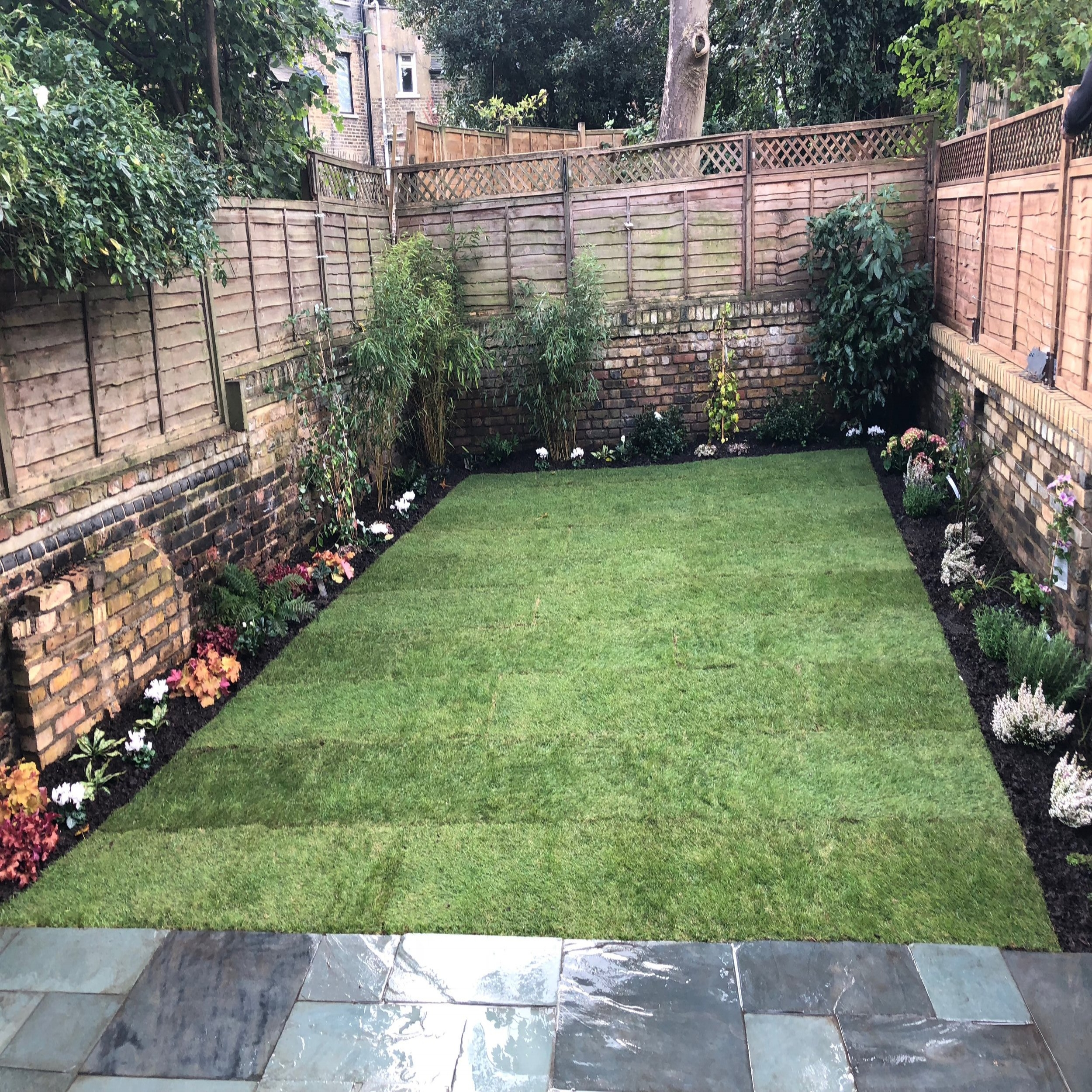 Stoke Newington  a colourful and simple garden on a tight budget. dominated by a central rectangular lawn and surrounded by a mixture of herbaceous perennials and shrubs,  this is an attractive and spacious garden,