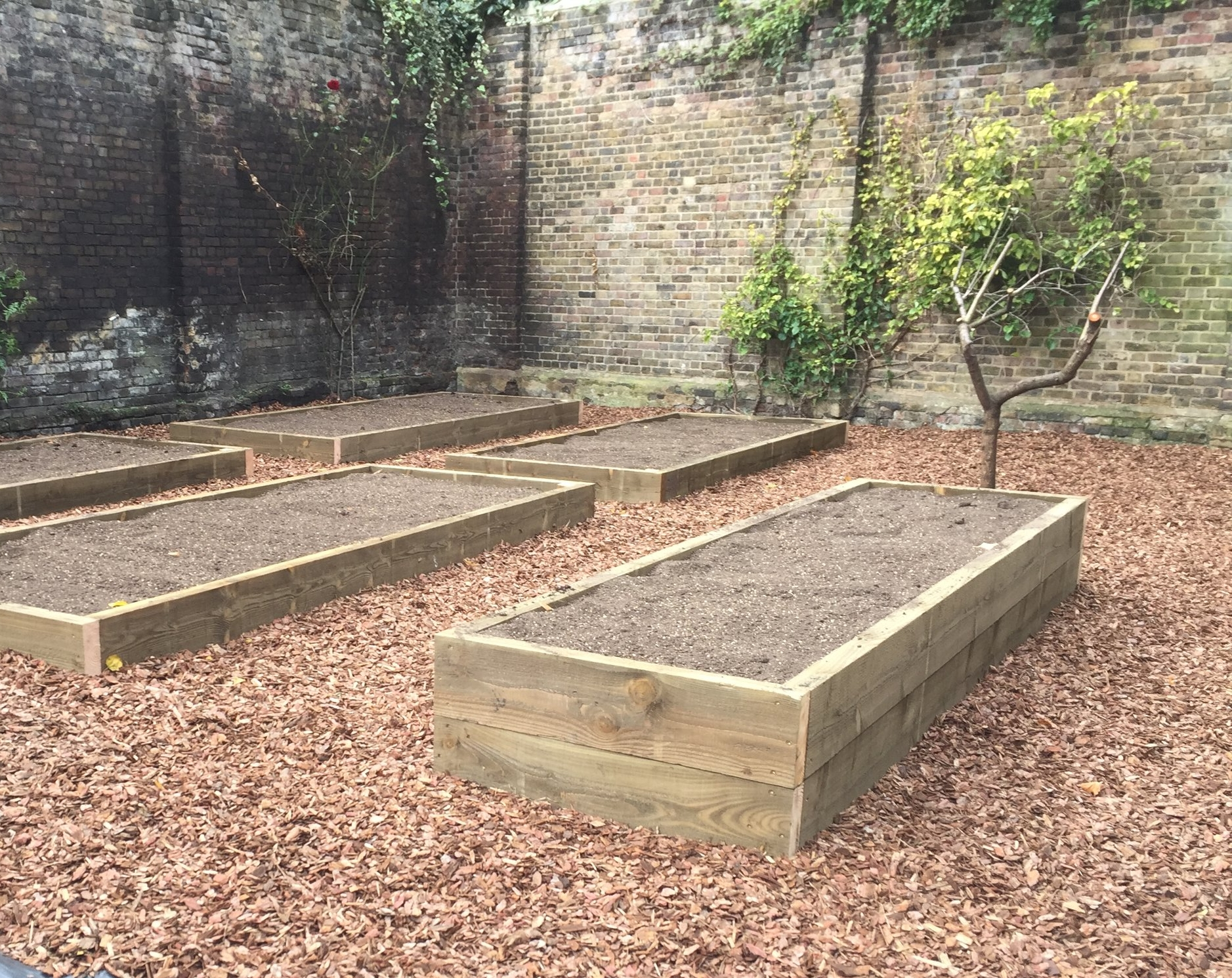 Old Rectory Garden  allotments at Old Rectory Gardens:  simple  raised beds including one for disabled access, a storage shed and a selection of fruit trees. a simple, effective and highly functional allotment garden.