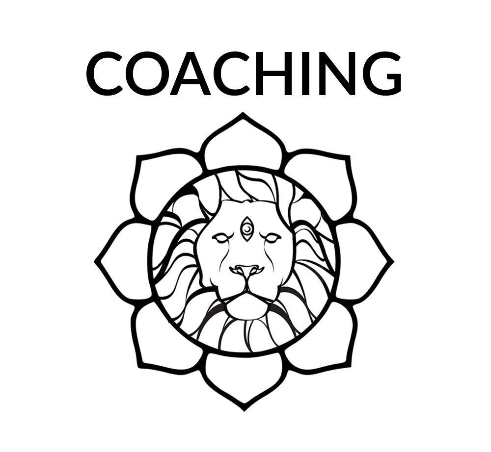 coaching lion shorter.jpg