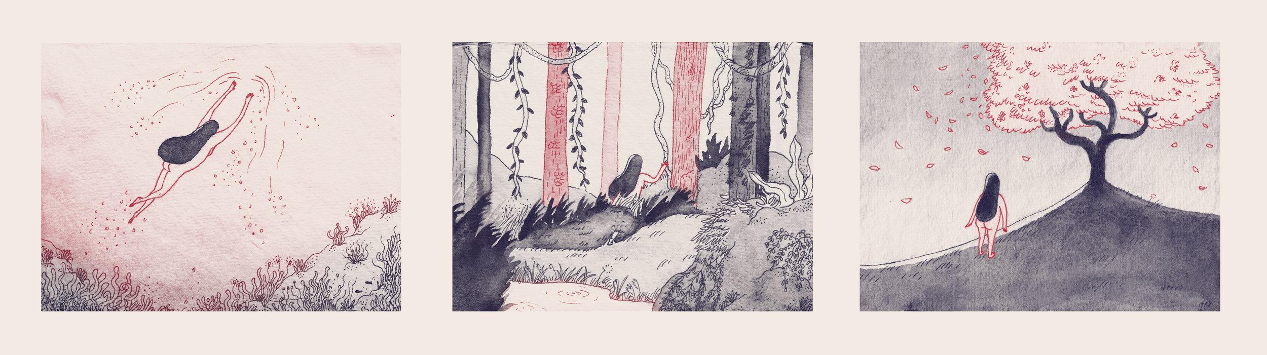 illustrations -