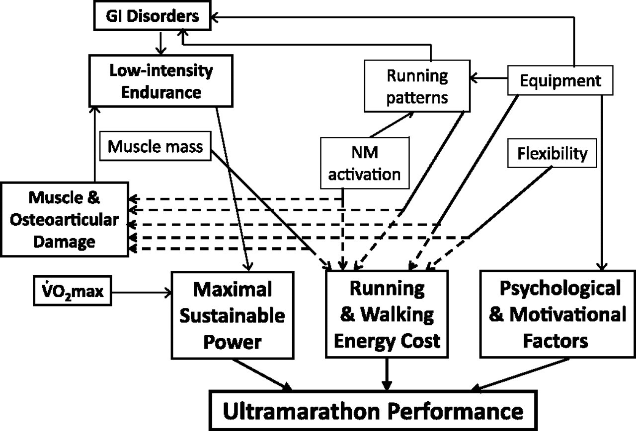 FIGURA 1 - Figura extreta del treball de Millet et al., (2012). Resum dels factors influenciant el rendiment en Ultra Trails. GI= Gastrointestinals, NM= neuromuscular.