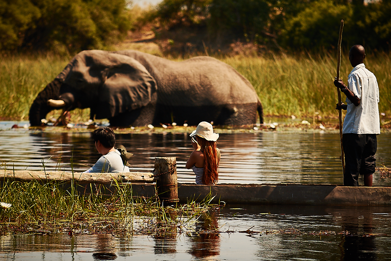 Mokoro trips; get down low and close to nature!