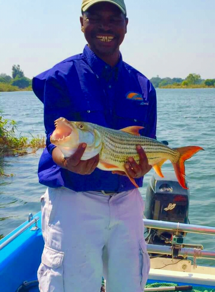 The Fishing Ledgend of the Upper Zambezi River, Masauso from; Ultimate Fishing Safaris