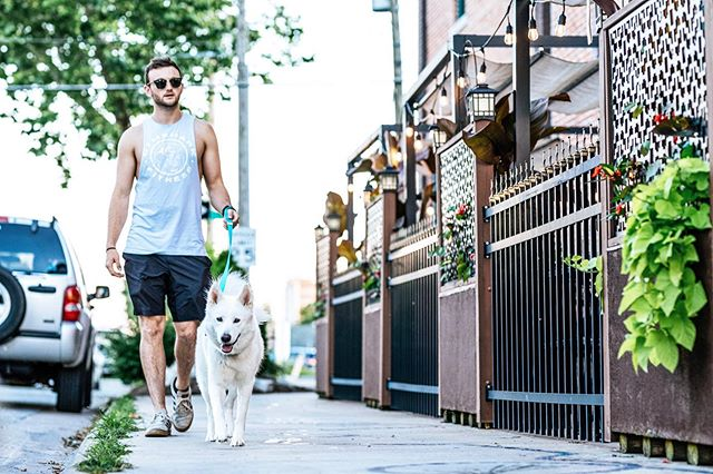 You could at leashed take your dog on a walk today @shopknottydog