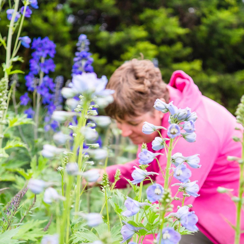 Claire Brown of Plantpassion in Surrey, SE England