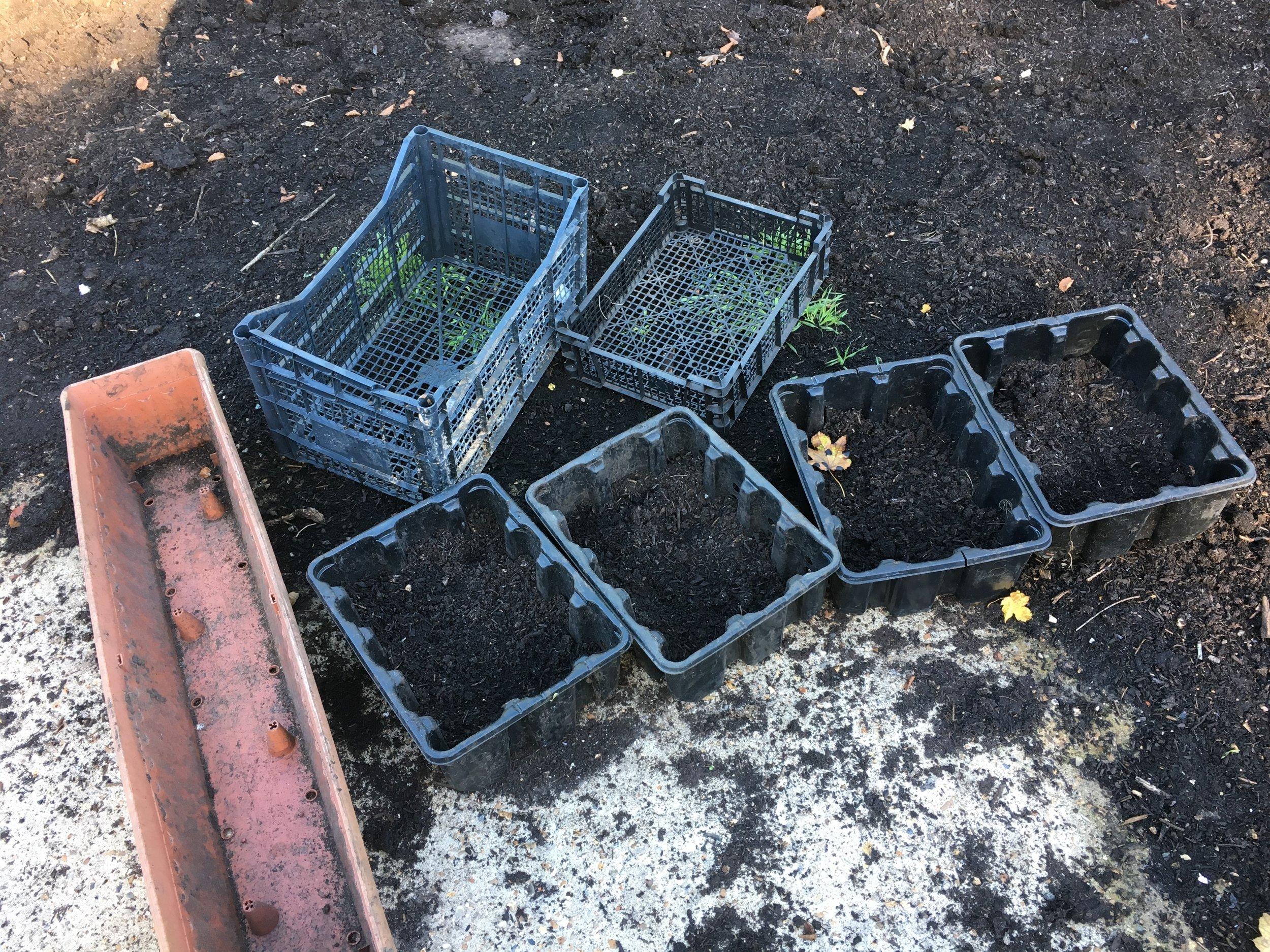 planting crates.jpg