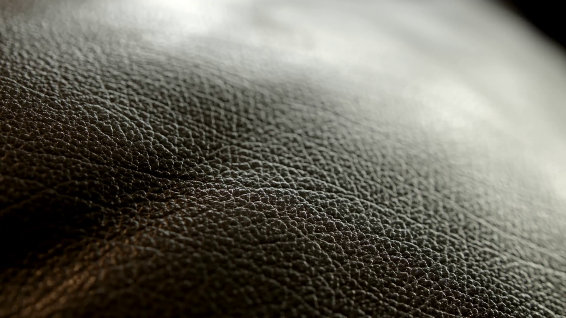 Leather Hide Texture