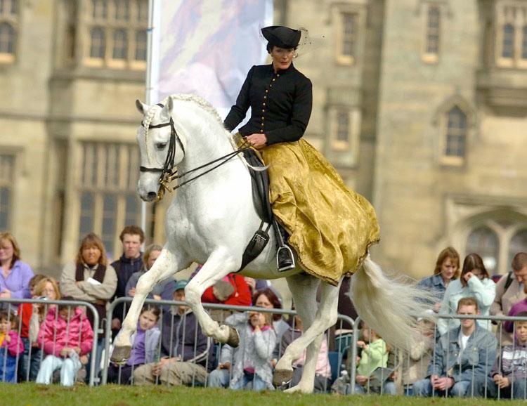 Festival of the Horse.jpeg