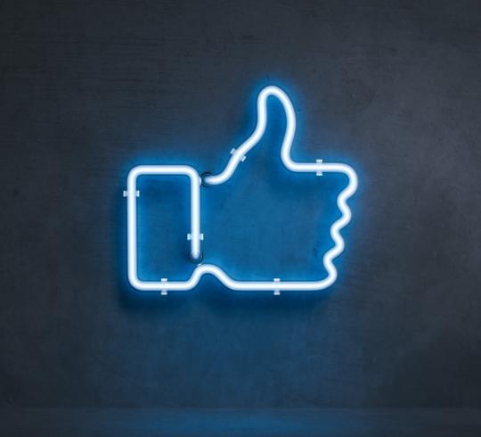 Follow along on social media as we highlight our 13 Core Principles -
