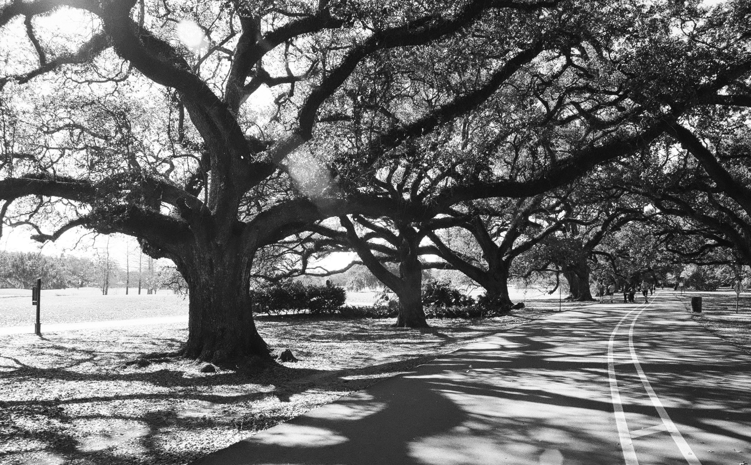 Audubon Park, New Orleans, Louisiana