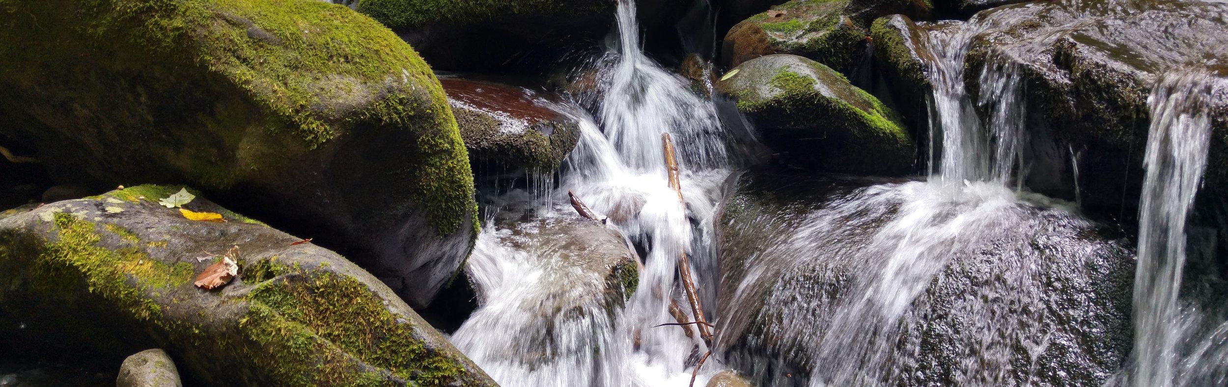 rivulet stream.jpg
