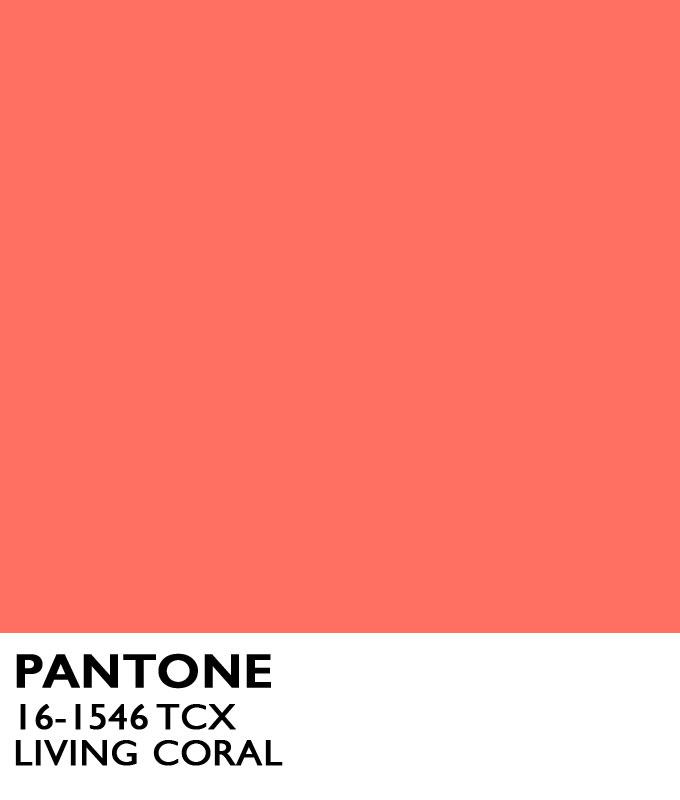 Pantone-Color-of-Year-2019-Living-Coral-1.jpg