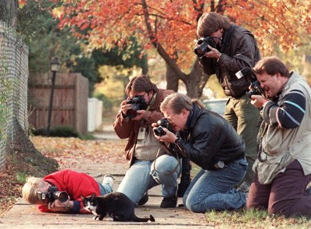 Photographer sadly unknown, but this is  Socks, one of the Clinton family cats , being photographed by press photographers in the early 90's - 2018 press photographers please take note of what really constitutes worthy subject matter.