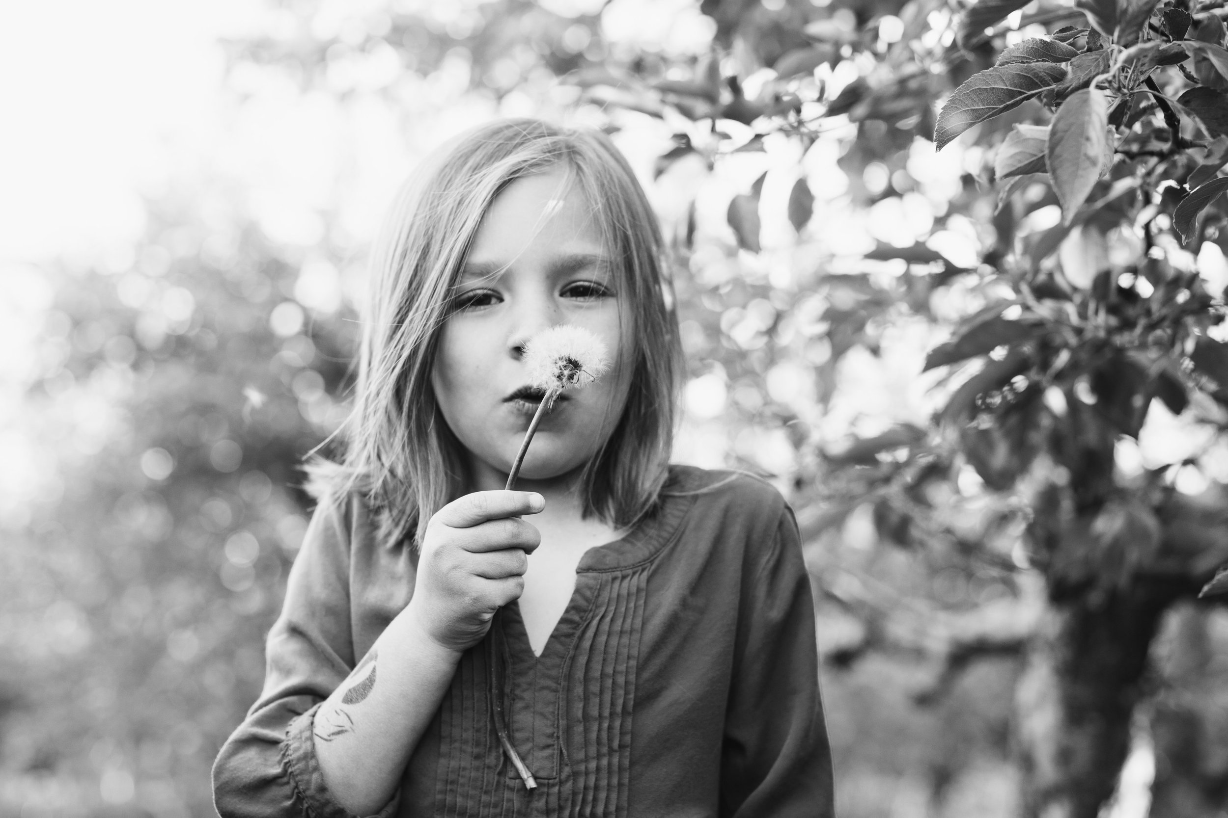Danielle Thorn Favorites-0002.jpg